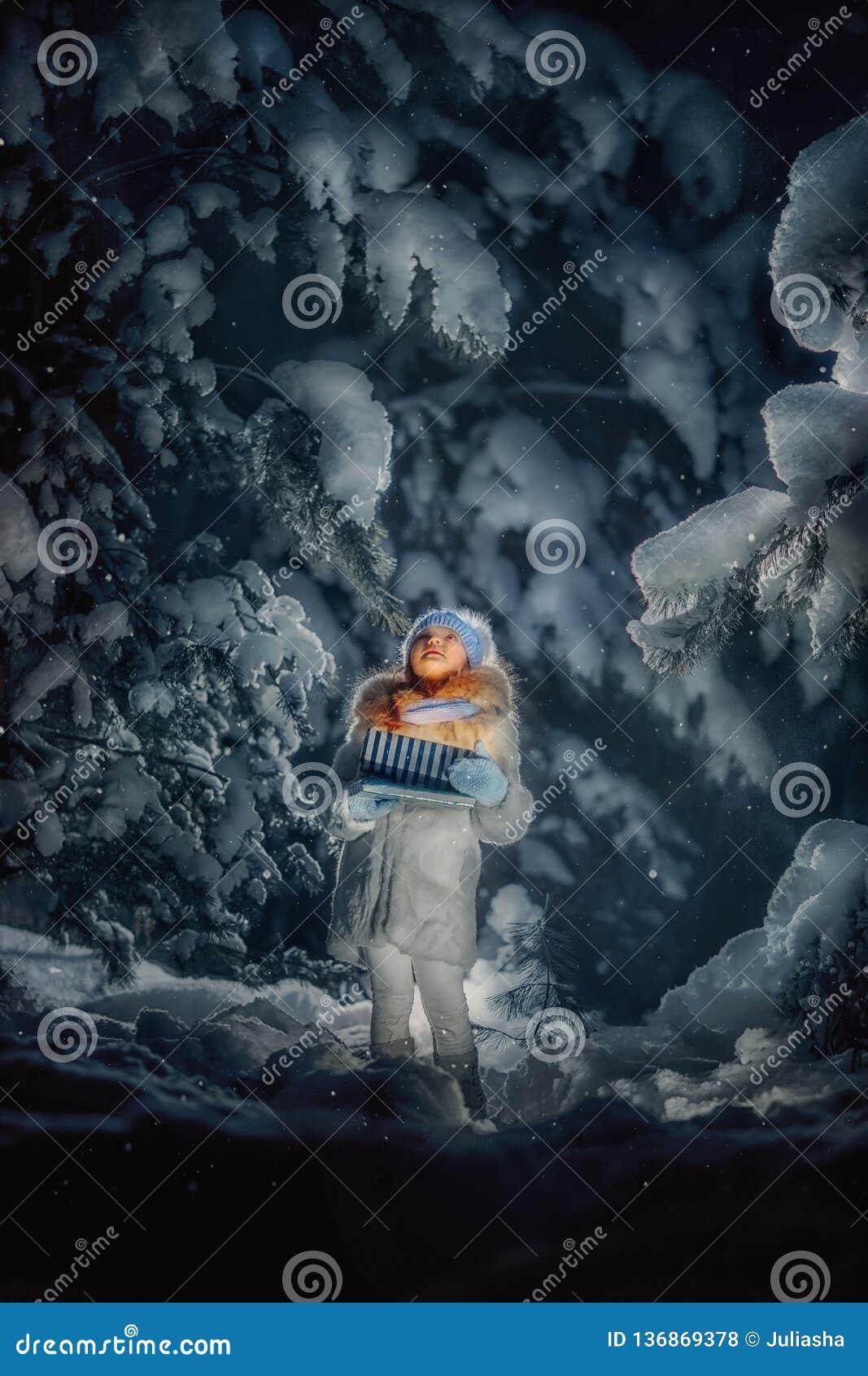 Νύχτα στο χιονώδες δάσος