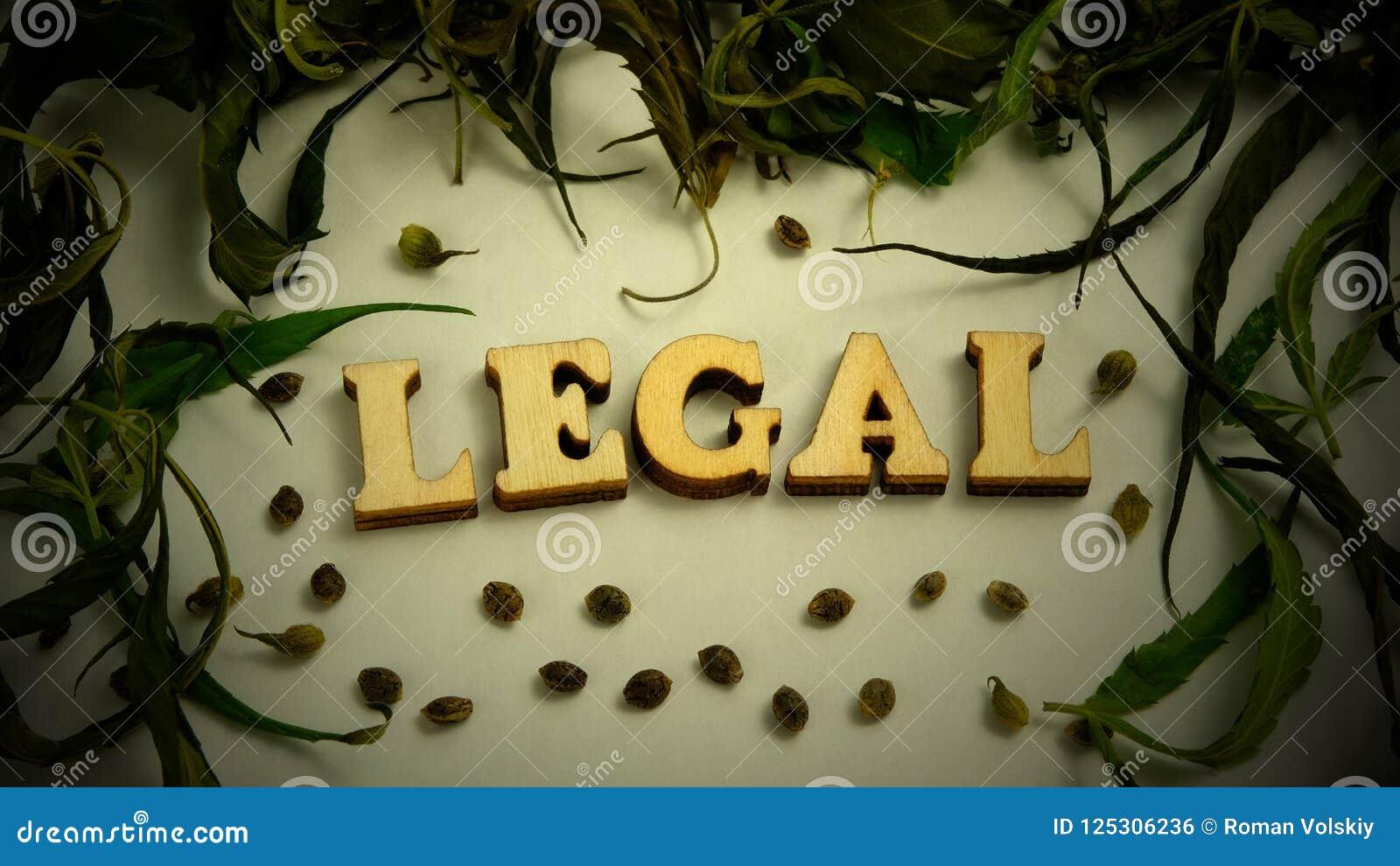 Ξεράνετε τα φύλλα και τα σιτάρια της μαριχουάνα υπό μορφή πλαισίου σε ένα άσπρο υπόβαθρο vignetting Η λέξη ΝΟΜΙΚΗ αποτελείται από