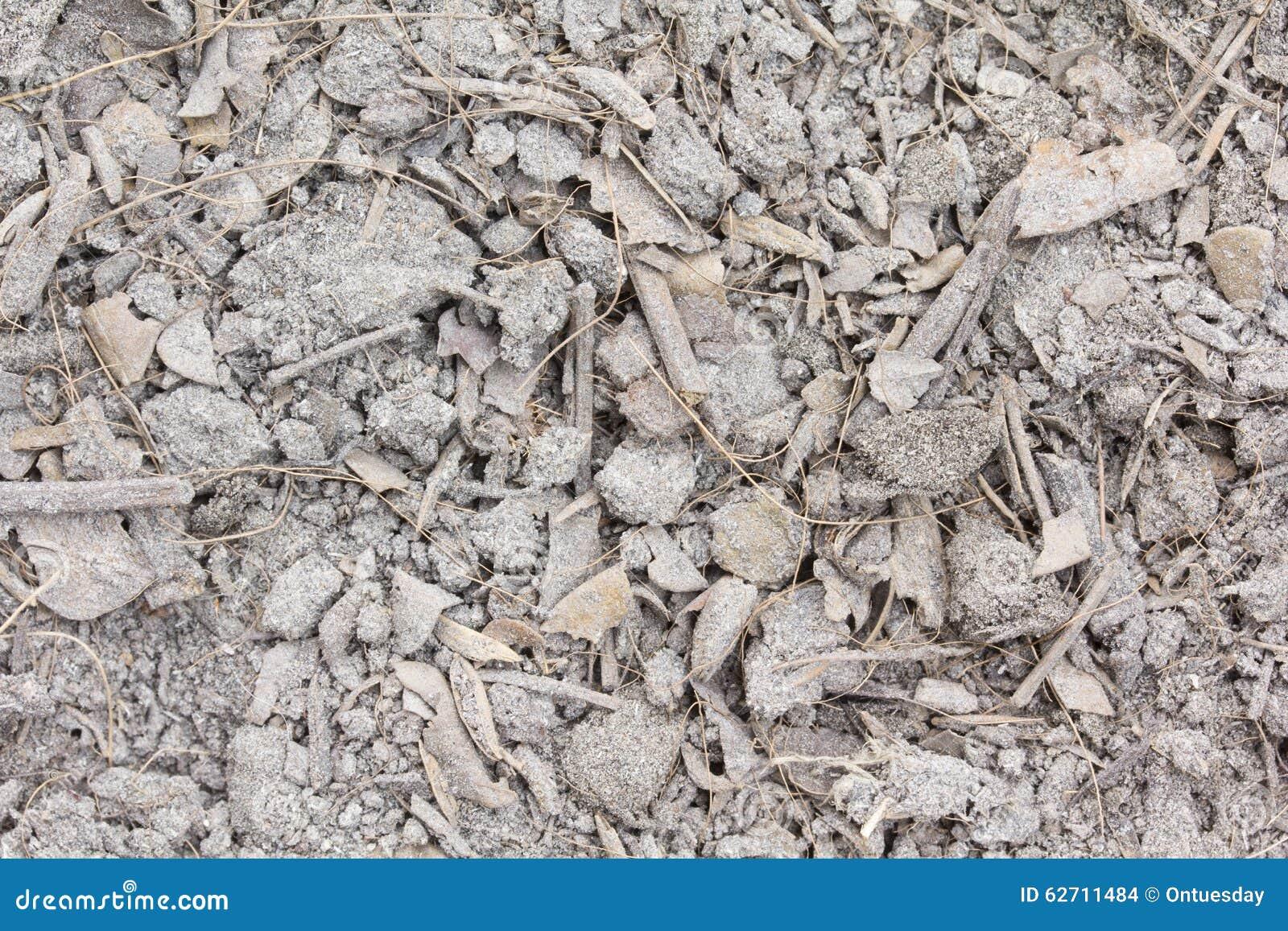 Ξηρά χώμα και φύλλο