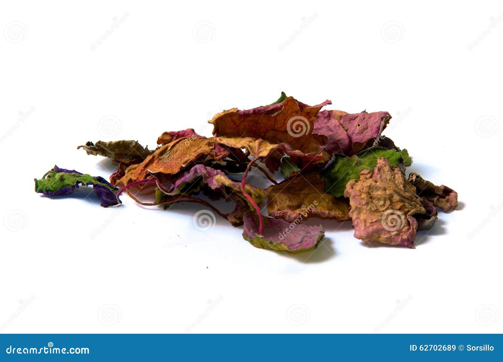 Ξηρά patchouly φύλλα