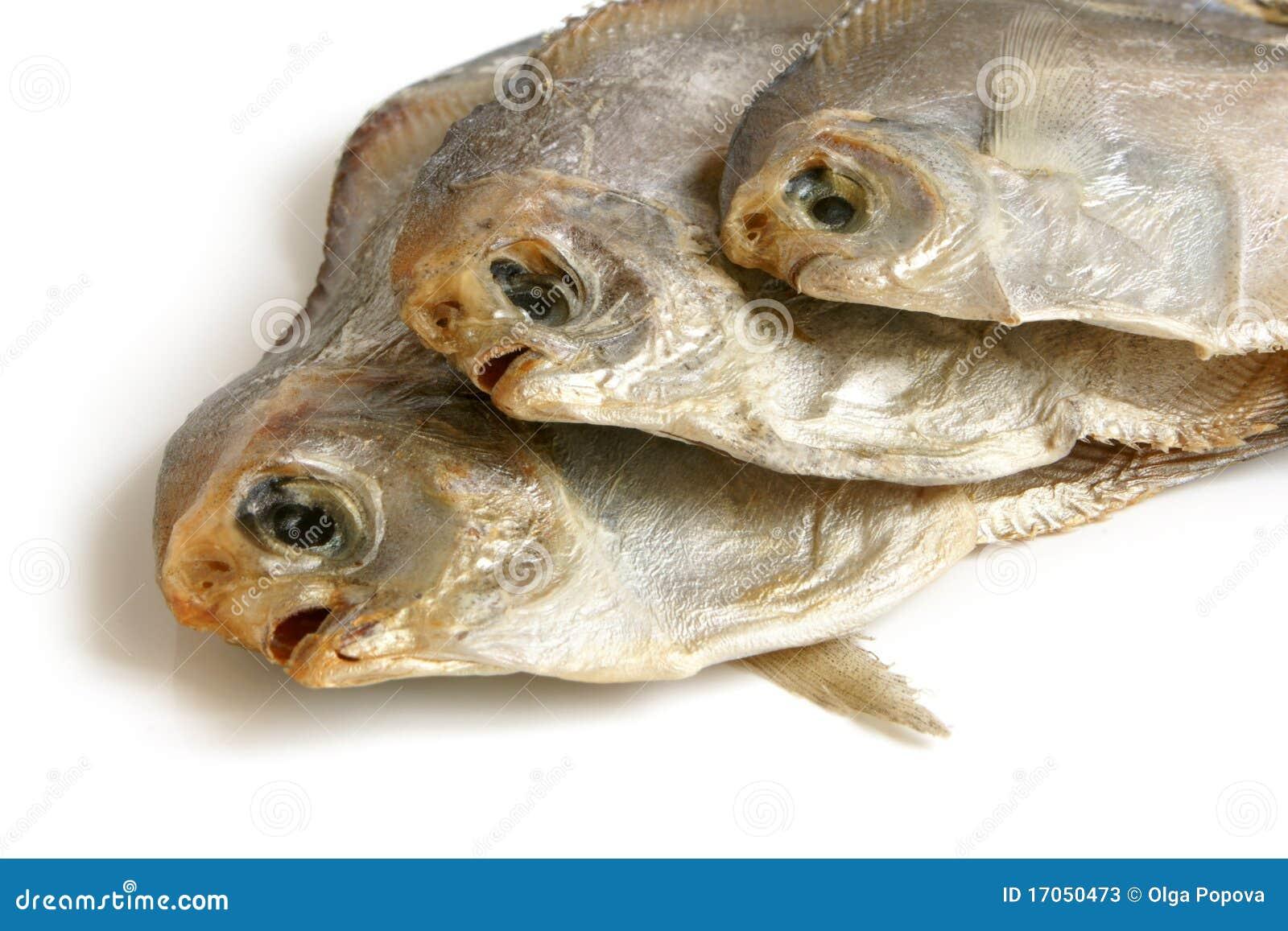 ξηρά piranhas