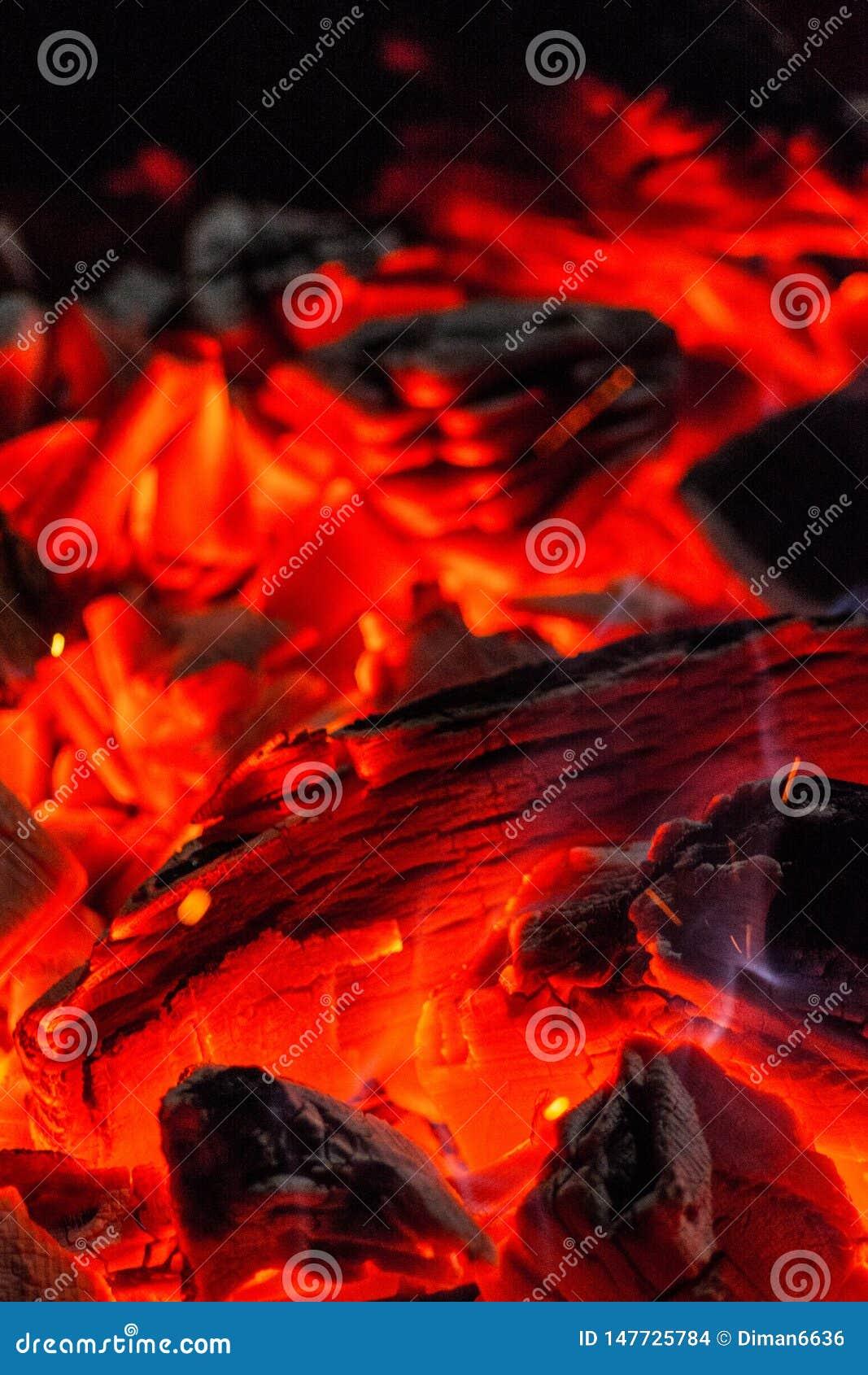 Ξυλάνθρακας Καίγοντας κέρατο Καίγοντας άνθρακες στη σχάρα