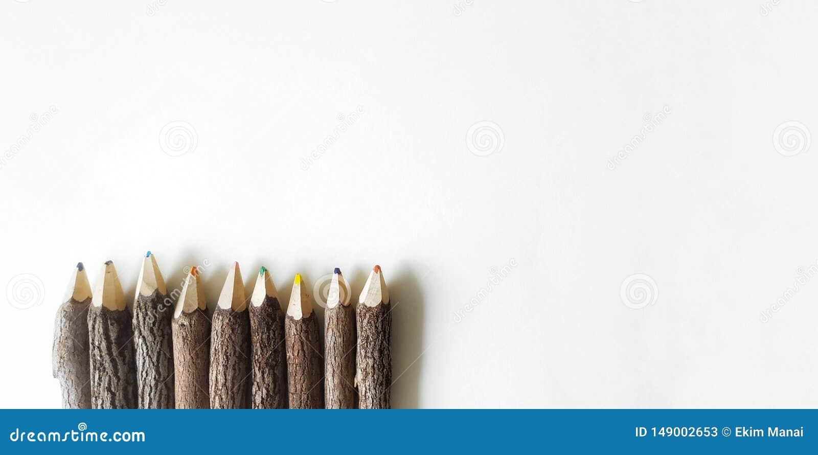 ξύλινα μολύβια χρώματος στο άσπρο υπόβαθρο