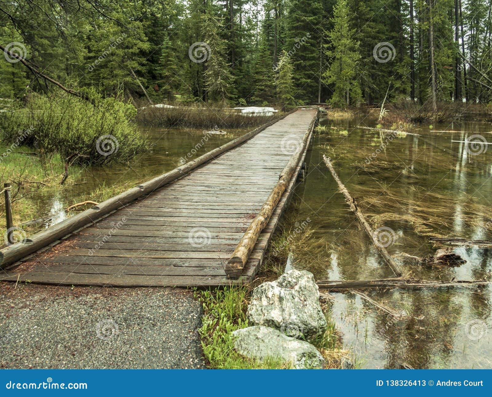 Ξύλινη γέφυρα κοντά στη λίμνη της Jenny στο μεγάλο εθνικό πάρκο Teton