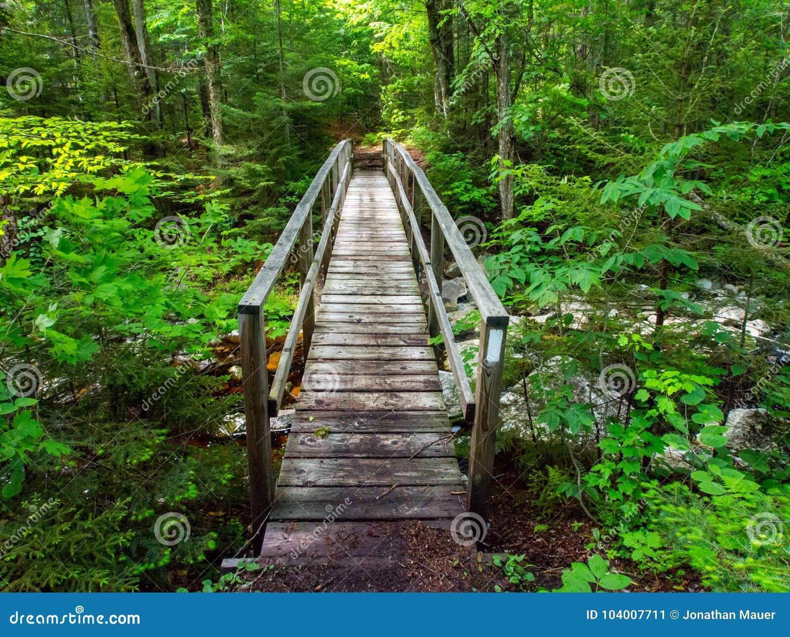 Ξύλινη γέφυρα, της όξινης απορροής πράσινα βουνά ιχνών, Βερμόντ