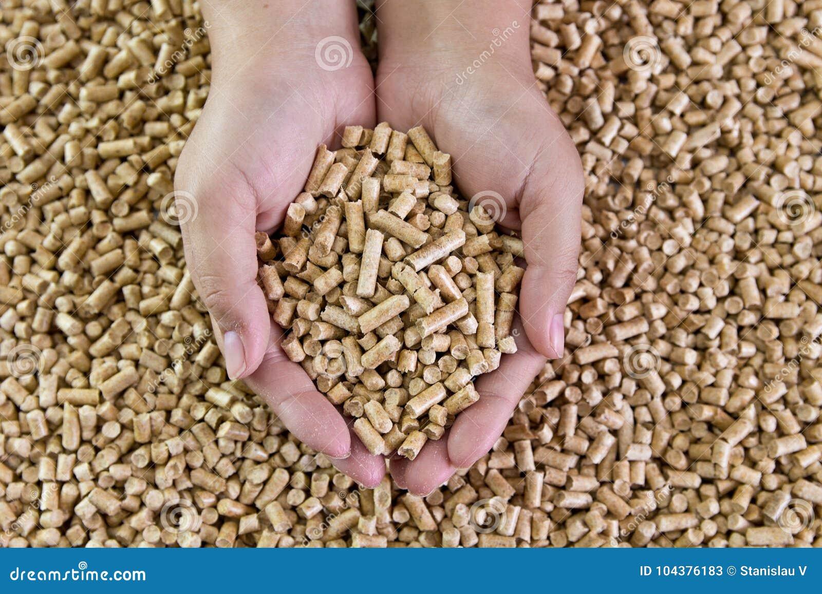 Ξύλινοι σβόλοι στα θηλυκά χέρια Βιολογικά καύσιμα εναλλακτικά βιολογικά καύσιμα