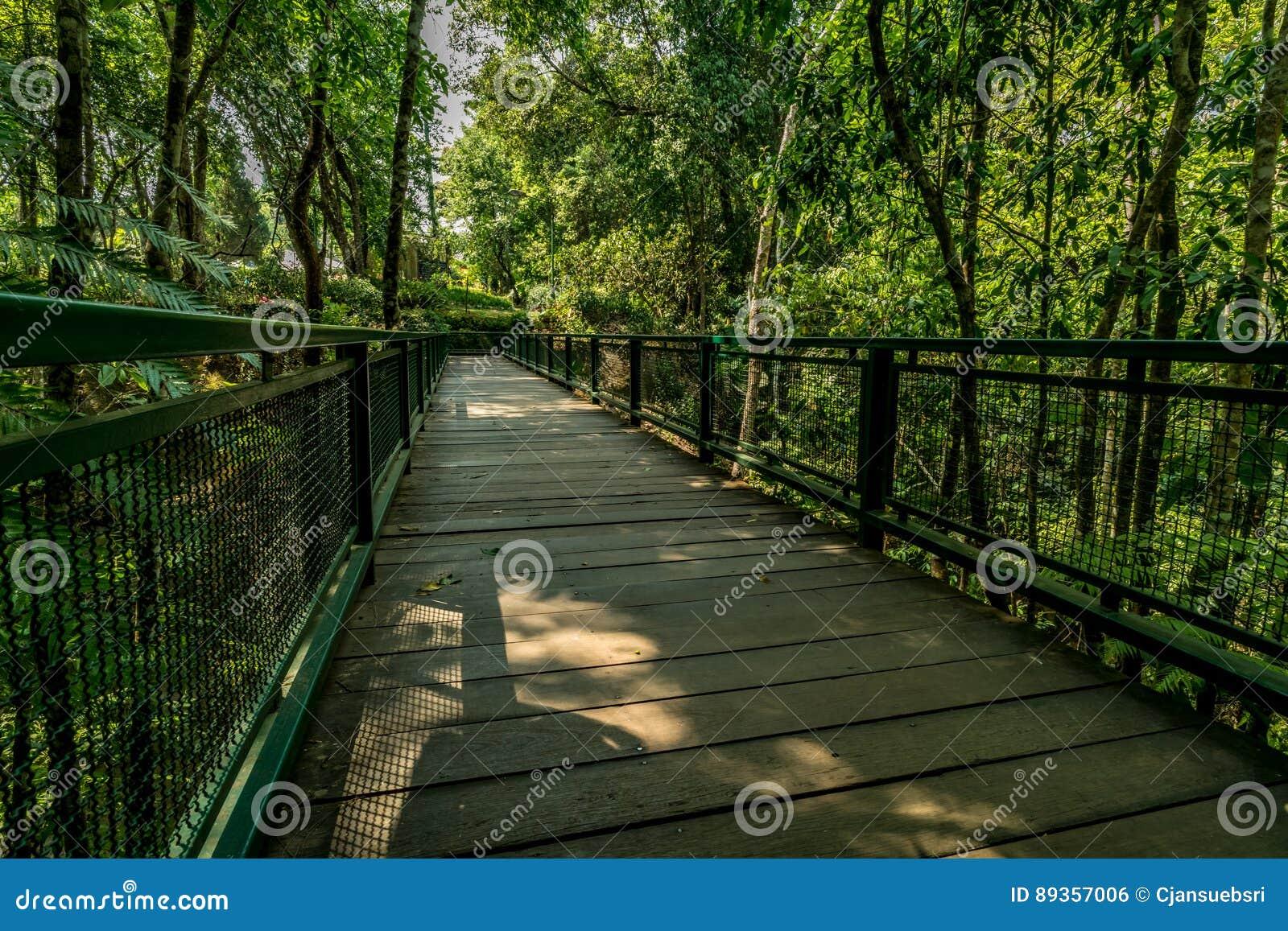 Ξύλινη γέφυρα για πεζούς στο πάρκο