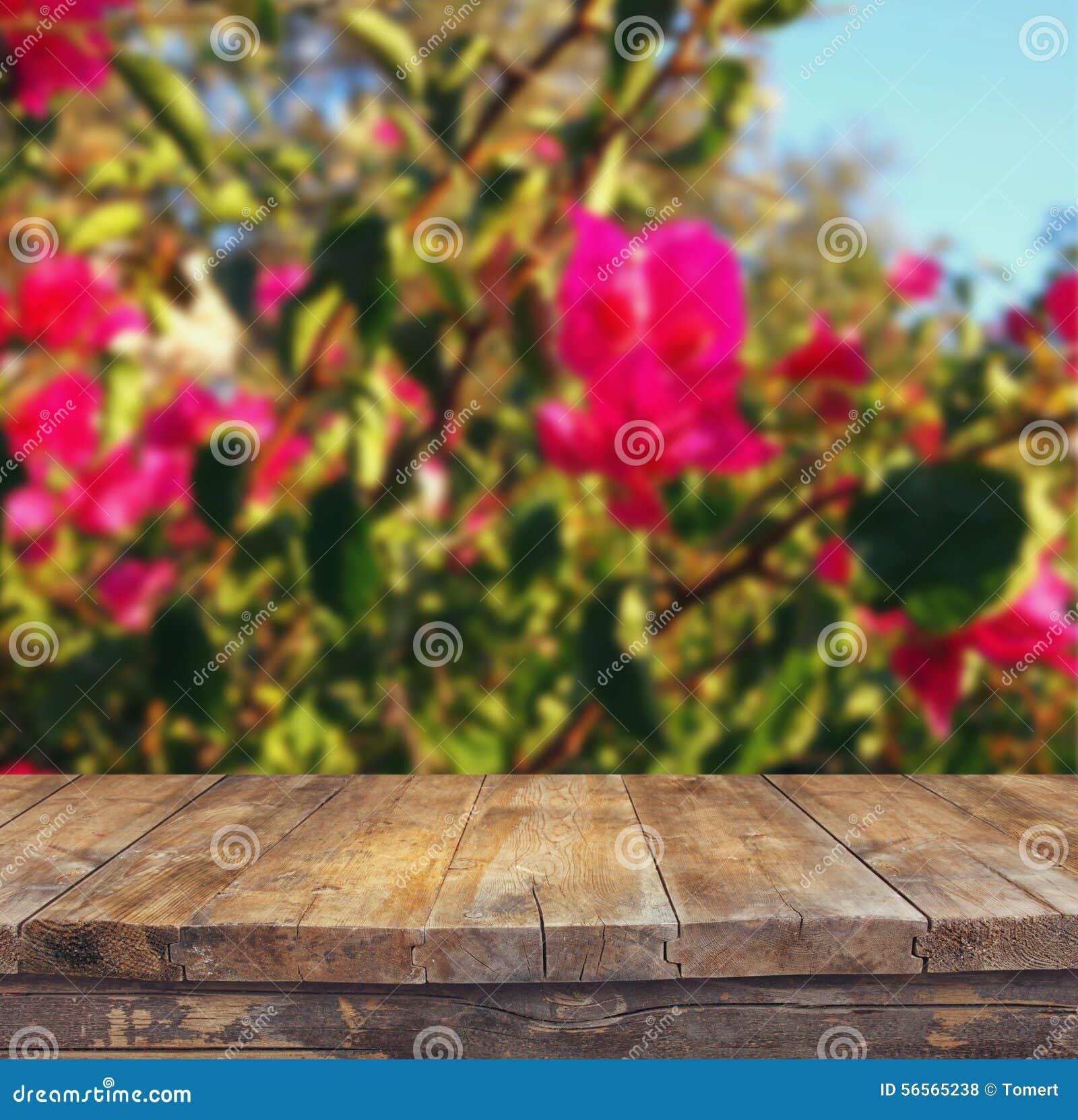 Download Ξύλινος πίνακας πινάκων μπροστά από το καλοκαίρι Landscap της άνθισης λουλουδιών Στοκ Εικόνες - εικόνα από αγροτικός, σχέδιο: 56565238