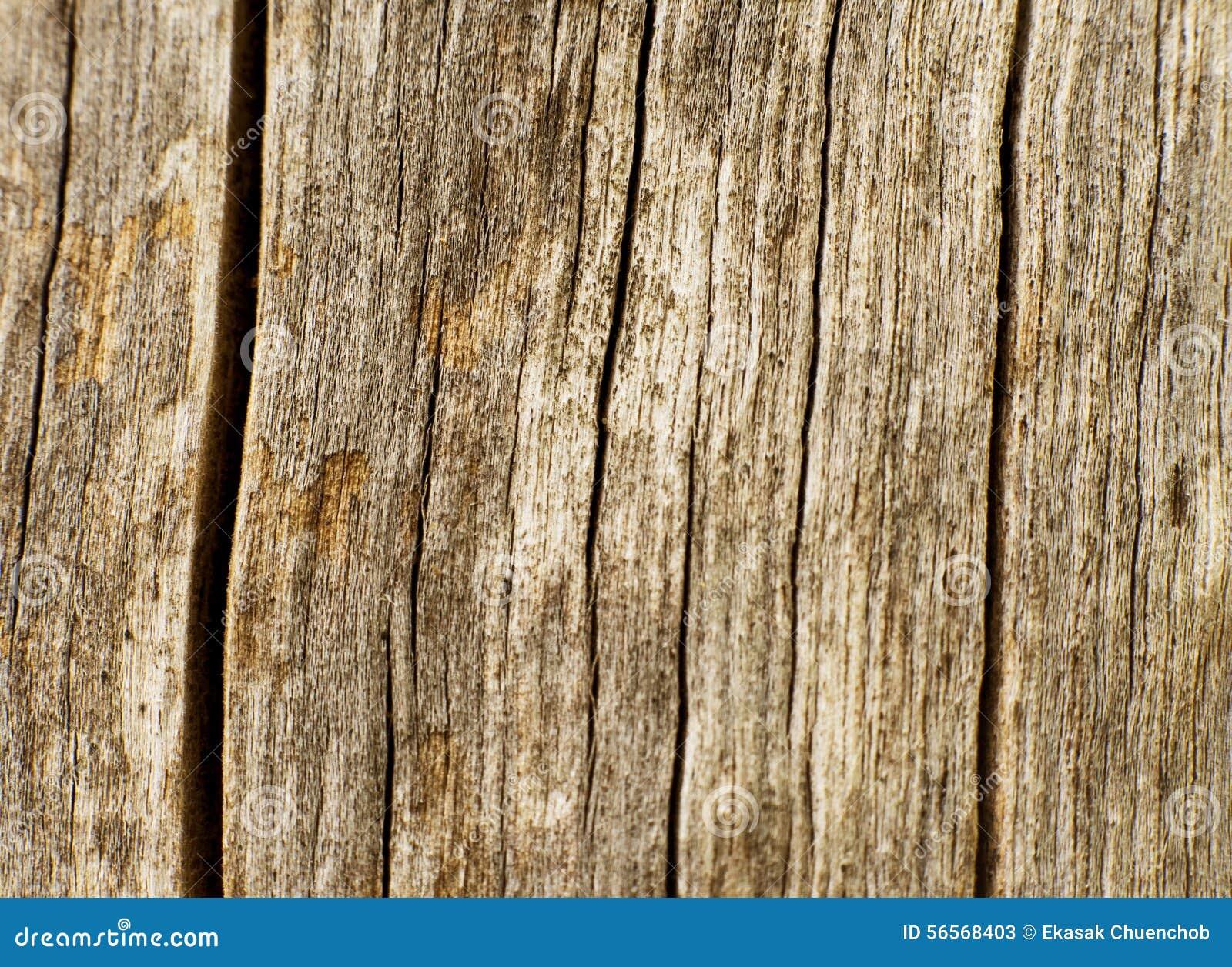 Download Ξύλινο taxture2 στοκ εικόνα. εικόνα από παλαιός, σύσταση - 56568403