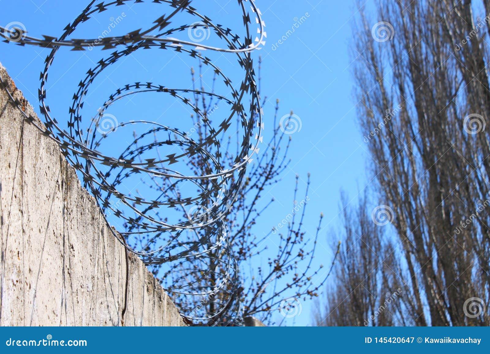 Οδοντωτός - καλώδιο στο φράκτη με το μπλε ουρανό, η έννοια της φυλακής, σωτηρία, διάστημα αντιγράφων