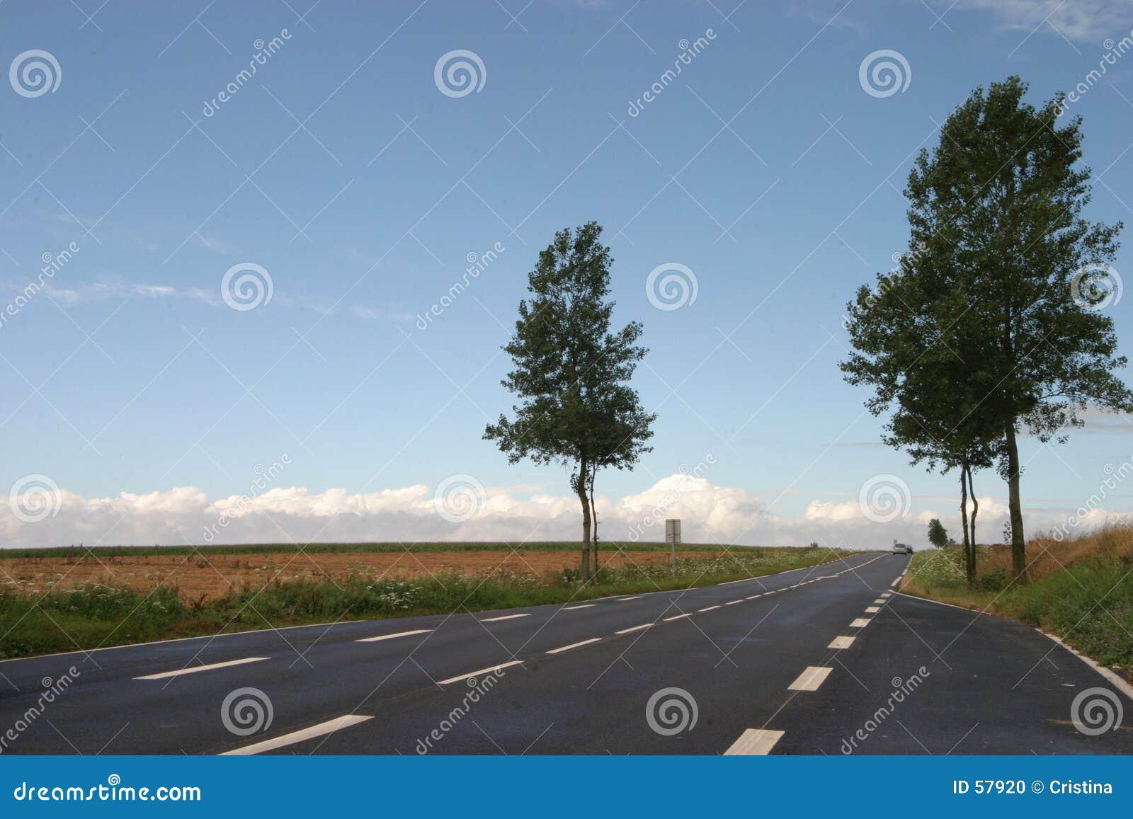 οδός γραμμών