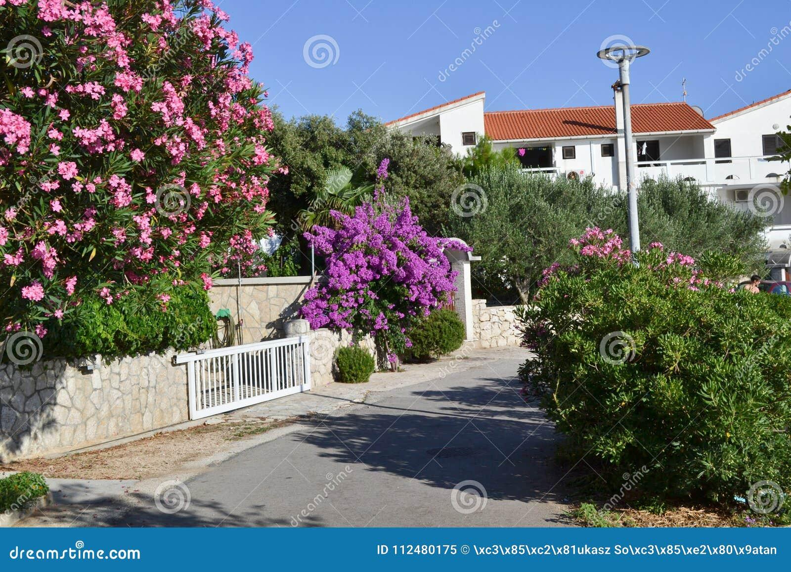 Οδός της ηλιόλουστης ημέρας παραθεριστικών πόλεων διακοπών, Pag Κροατία