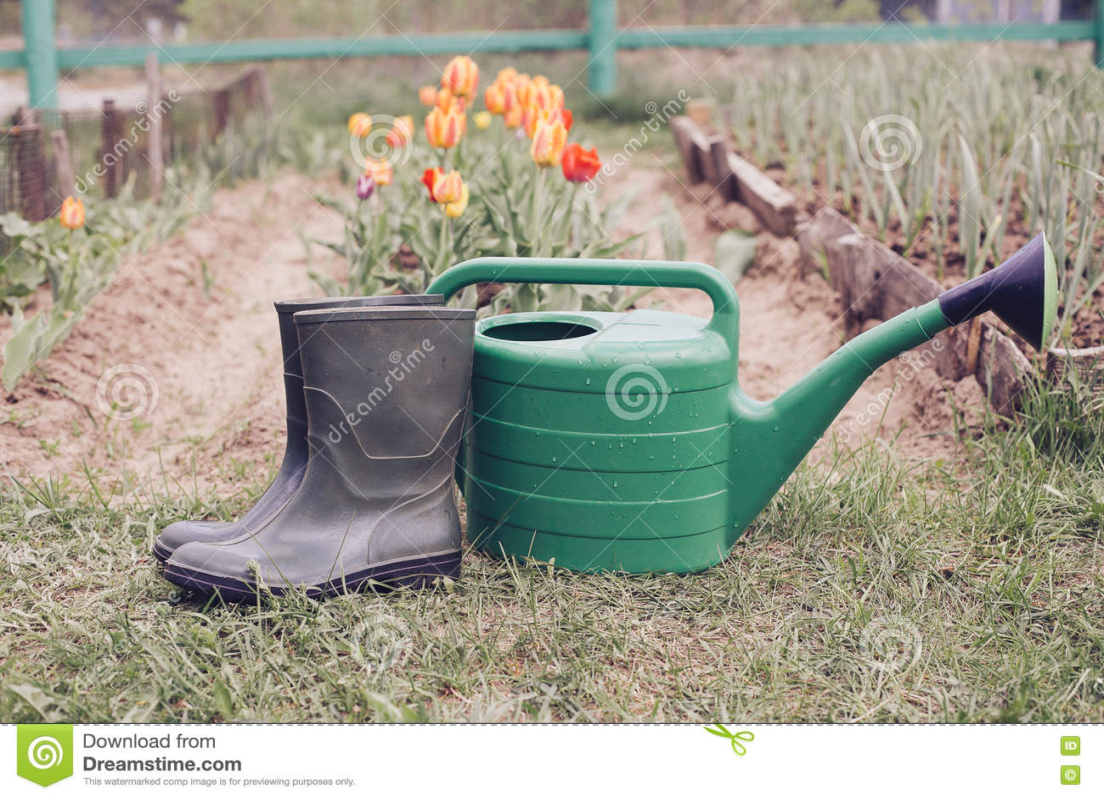 Οι λαστιχένιες μπότες με το πότισμα μπορούν στη χλόη