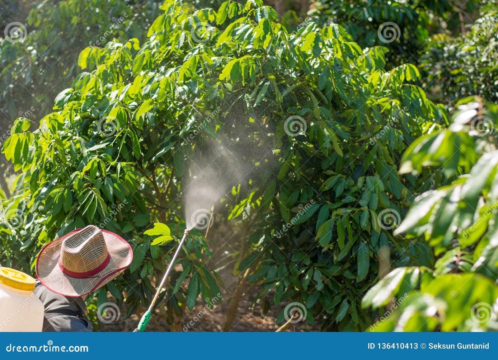 Οι κηπουροί ψεκάζουν τα εντομοκτόνα Farmer