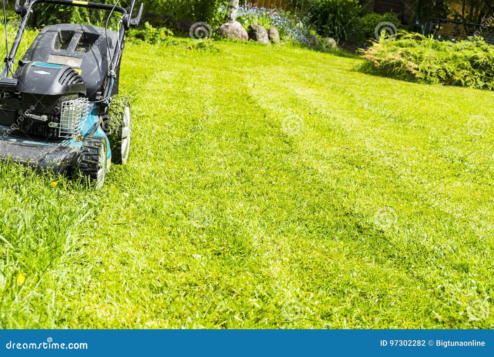 Οι κόβοντας χορτοτάπητες, θεριστής χορτοταπήτων στην πράσινη χλόη, εξοπλισμός χλόης θεριστών, κόβοντας εργαλείο εργασίας προσοχής
