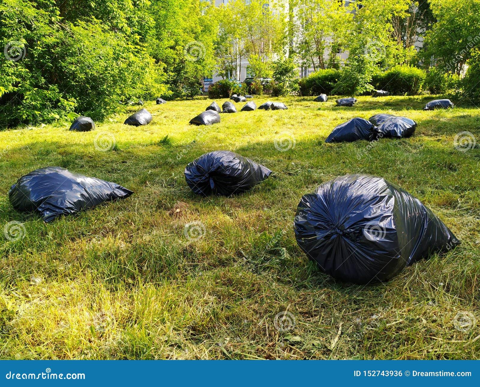 Οι μαύρες τσάντες των απορριμάτων βρίσκονται σε έναν καθαρό, πράσινο χορτοτάπητα στο πάρκο
