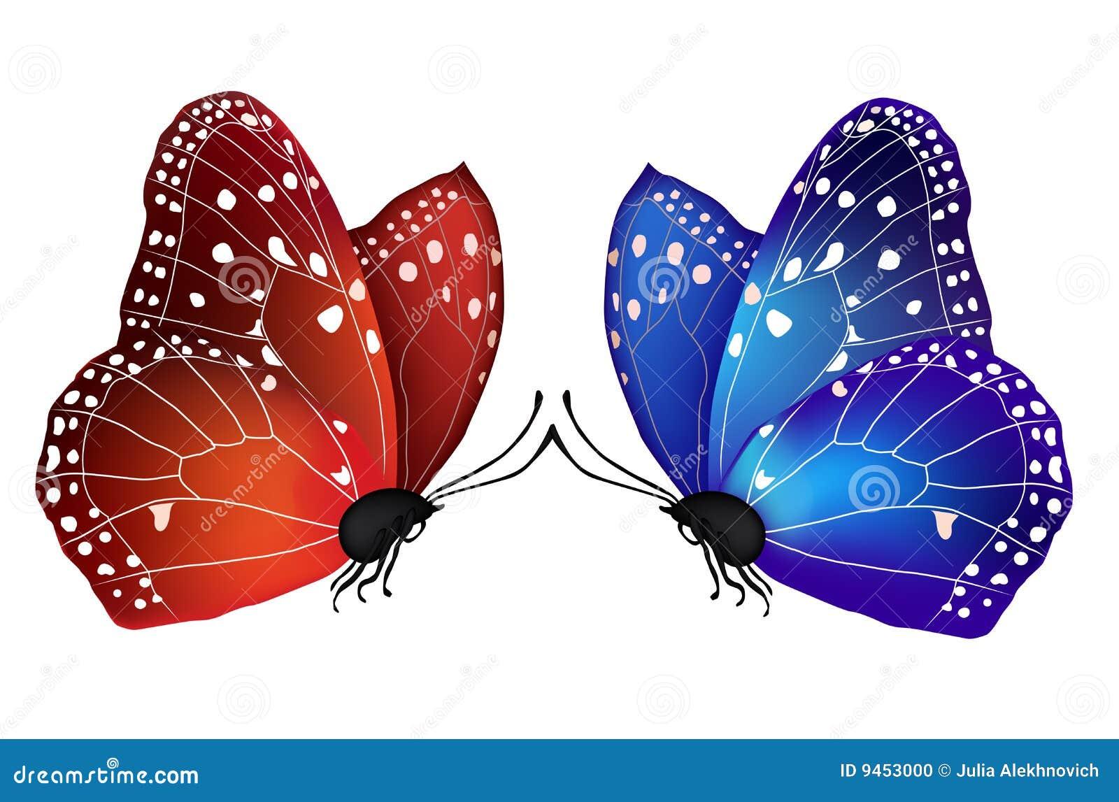 οι πεταλούδες αγαπούν τ&