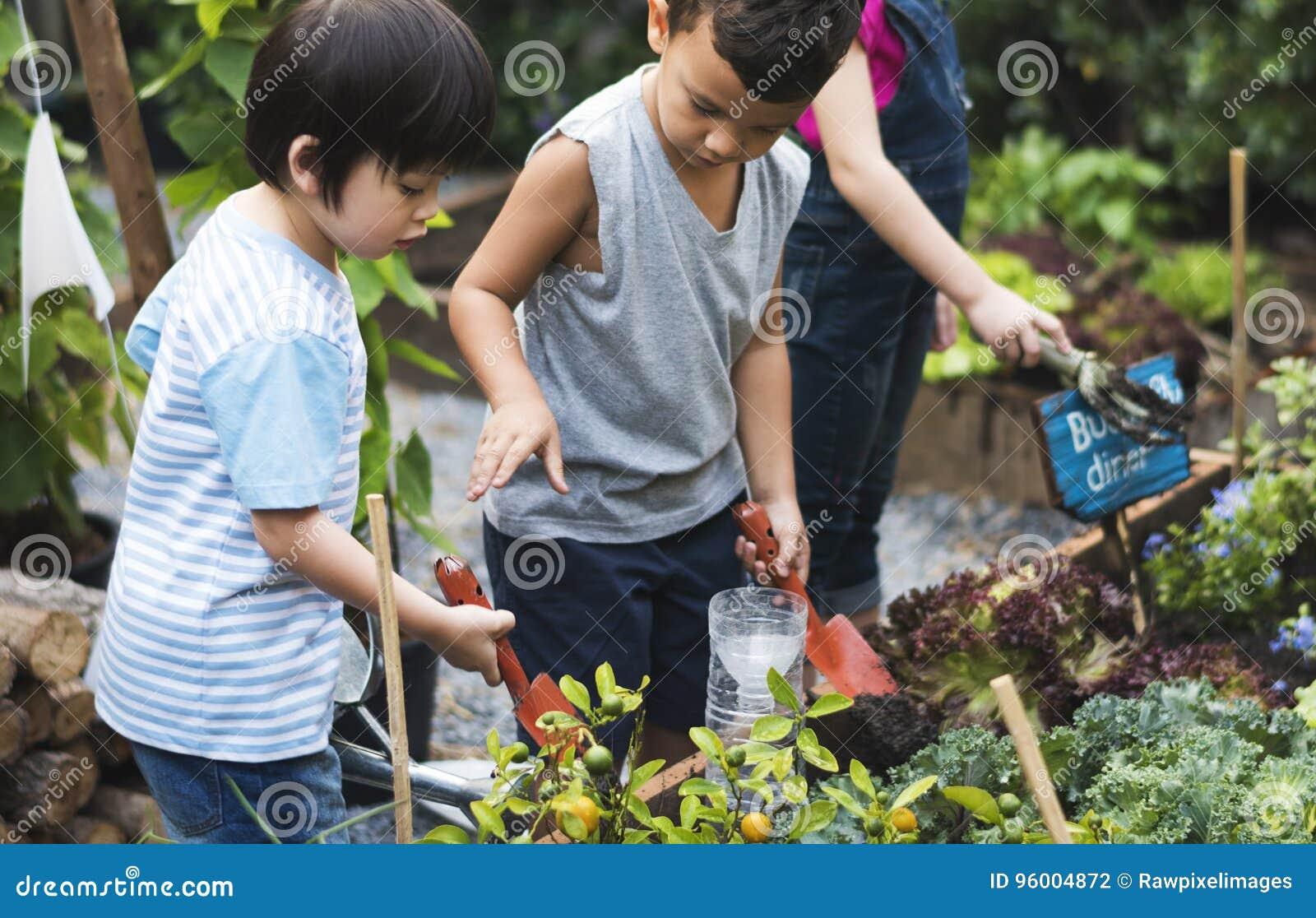 Ομάδα εκμάθησης παιδιών παιδικών σταθμών που καλλιεργεί υπαίθρια