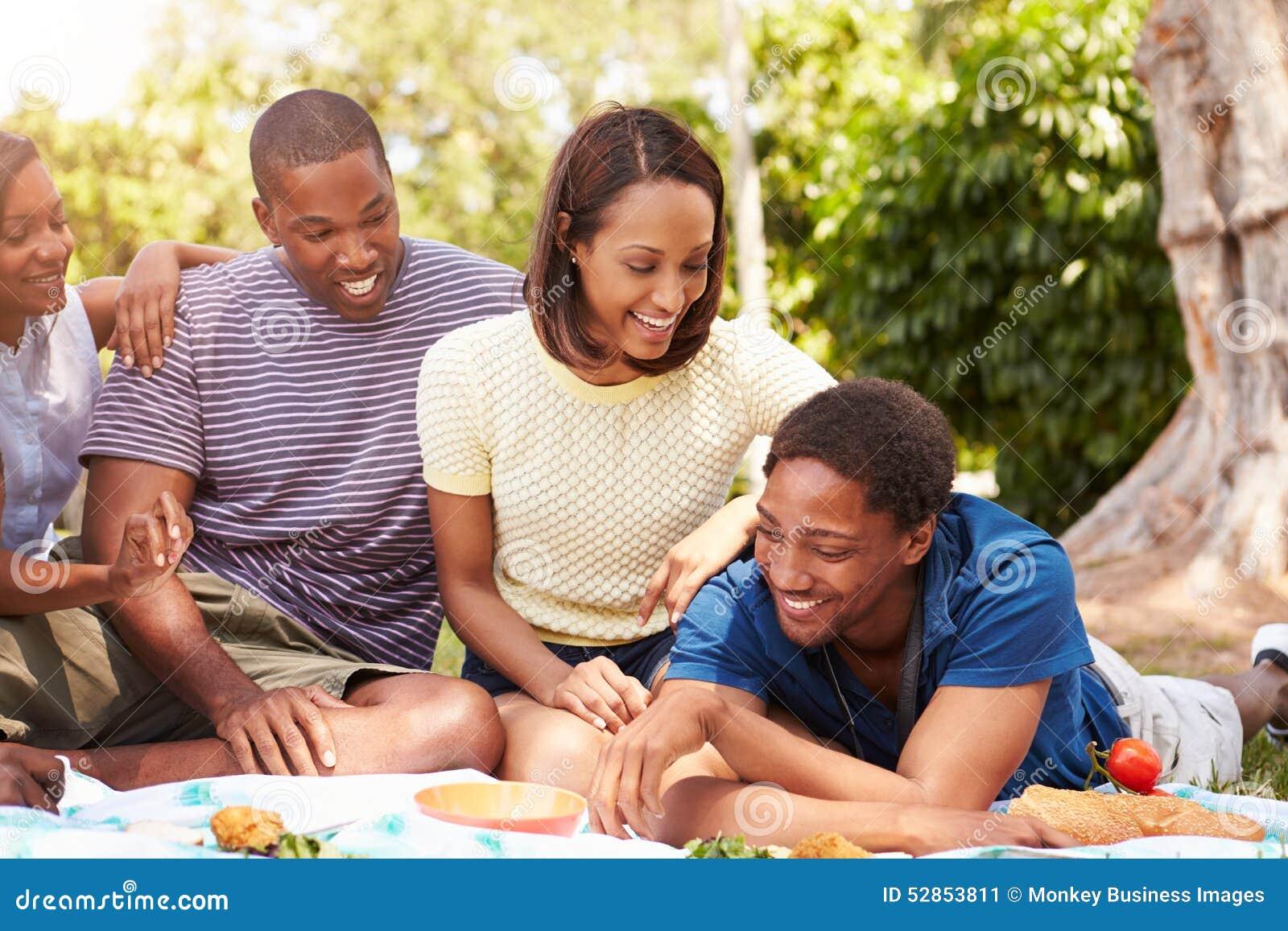 Ομάδα νέων φίλων που έχουν το πικ-νίκ από κοινού