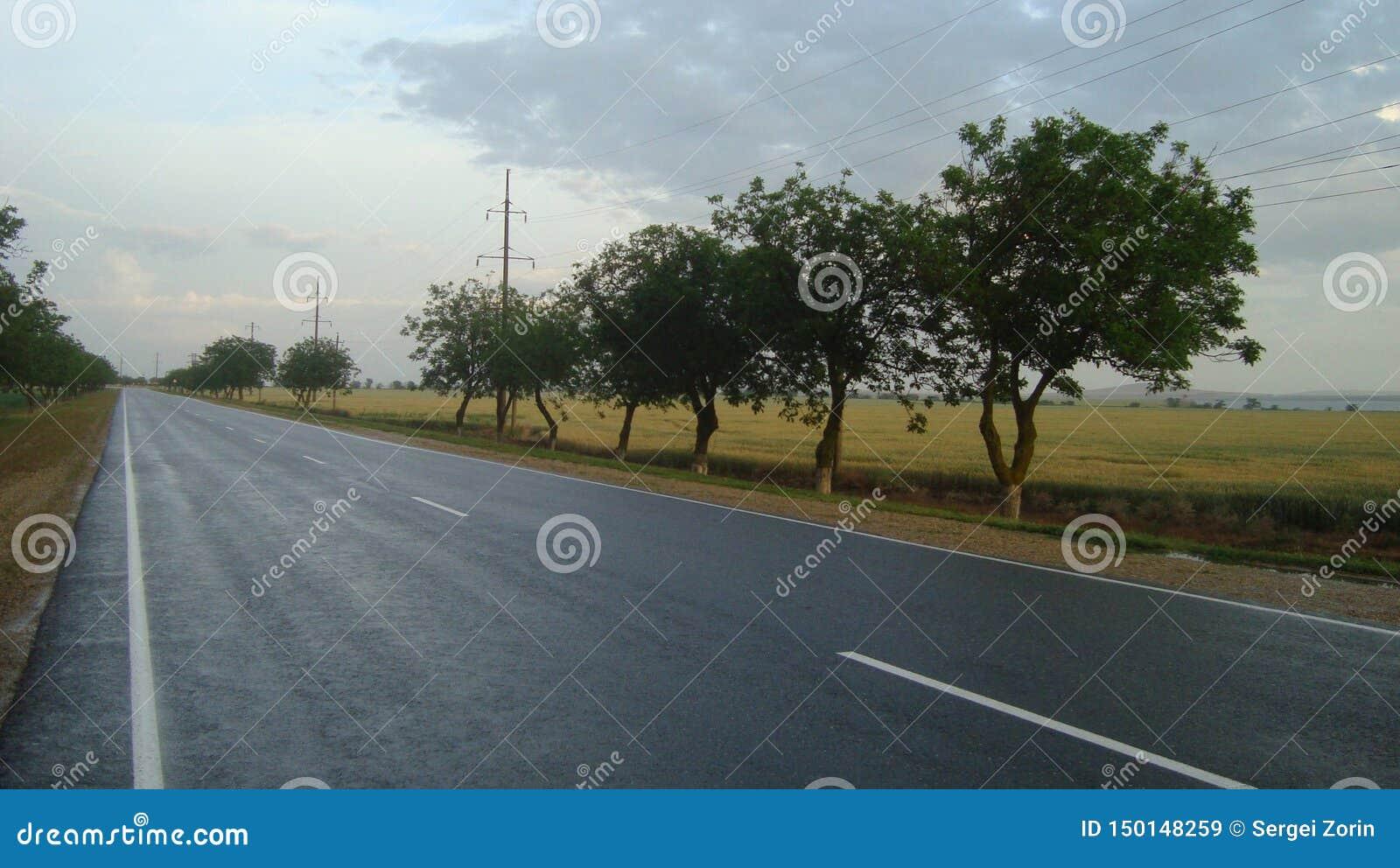 Ομαλός ευθύς δρόμος ασφάλτου έξω από την πόλη μετά από τη βροχή