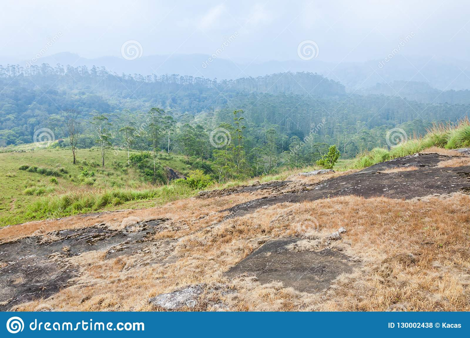 Ομιχλώδης ανατολή στο εθνικό πάρκο Periyar, Thekkady, Κεράλα, Ινδία