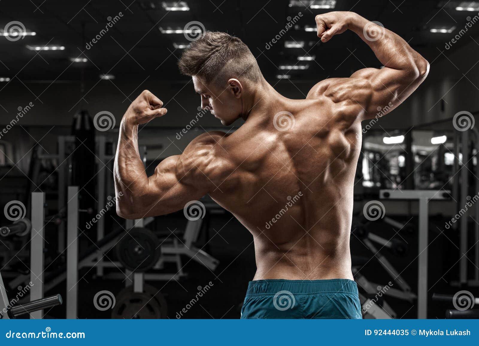 Οπισθοσκόπος μυϊκή τοποθέτηση ατόμων στη γυμναστική, που παρουσιάζουν πίσω και τους δικέφαλους μυς Ισχυρός αρσενικός γυμνός κορμό