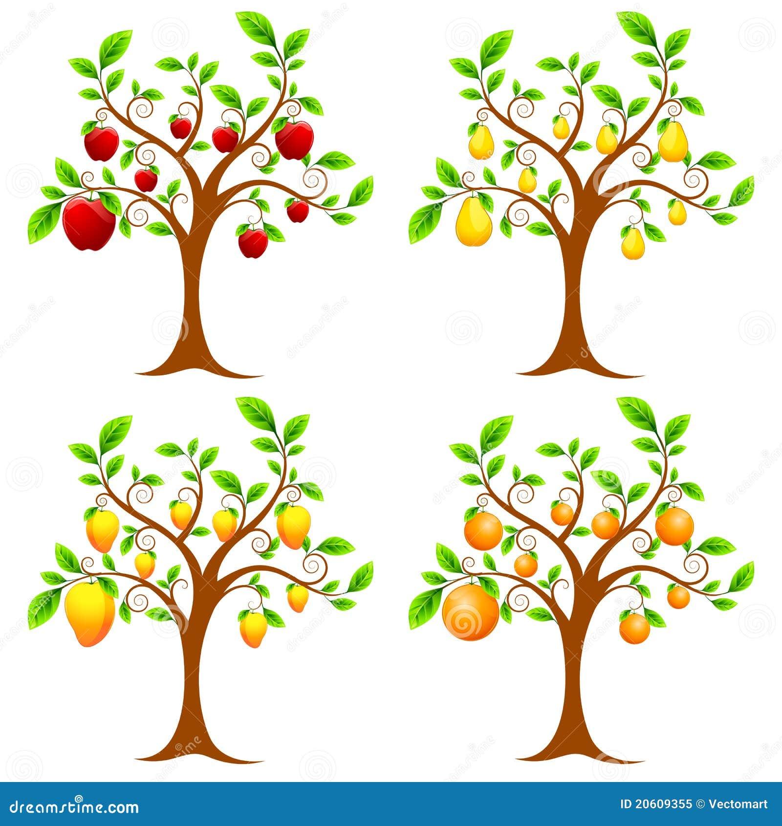 οπωρωφόρο δέντρο