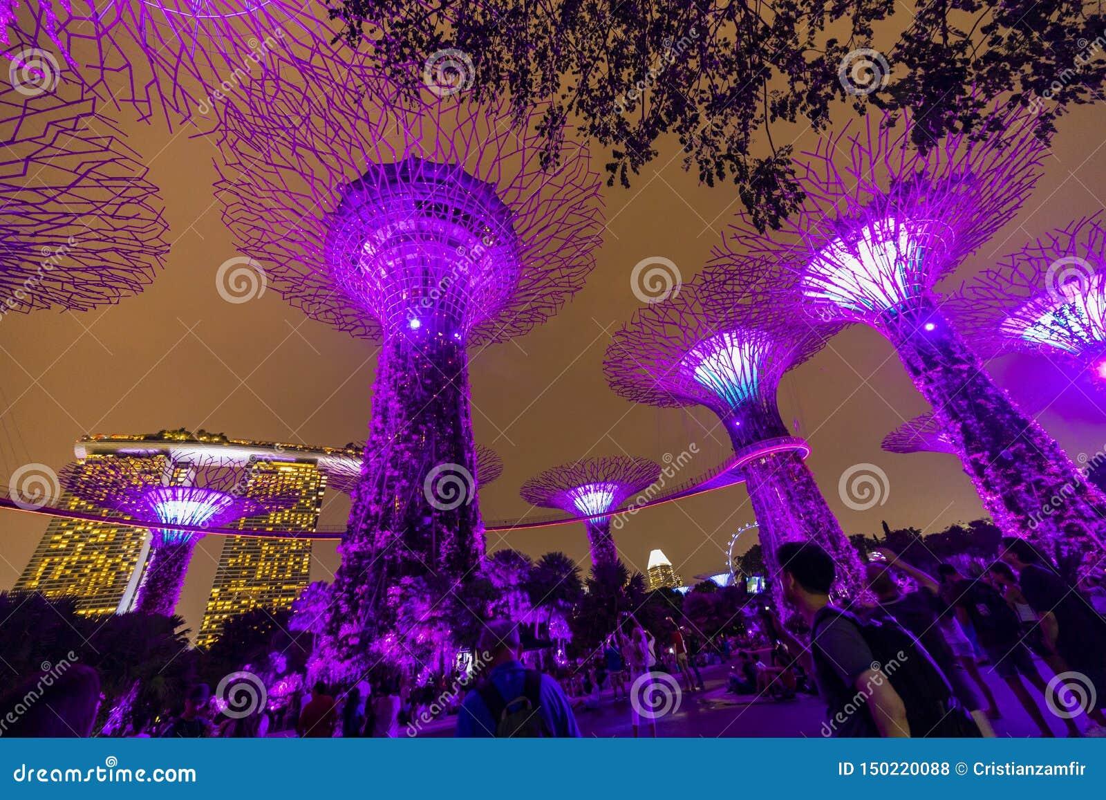 Ορίζοντας νύχτας της Σιγκαπούρης στους κήπους από τον κόλπο Άλσος SuperTree κάτω από τον μπλε νυχτερινό ουρανό στη Σιγκαπούρη