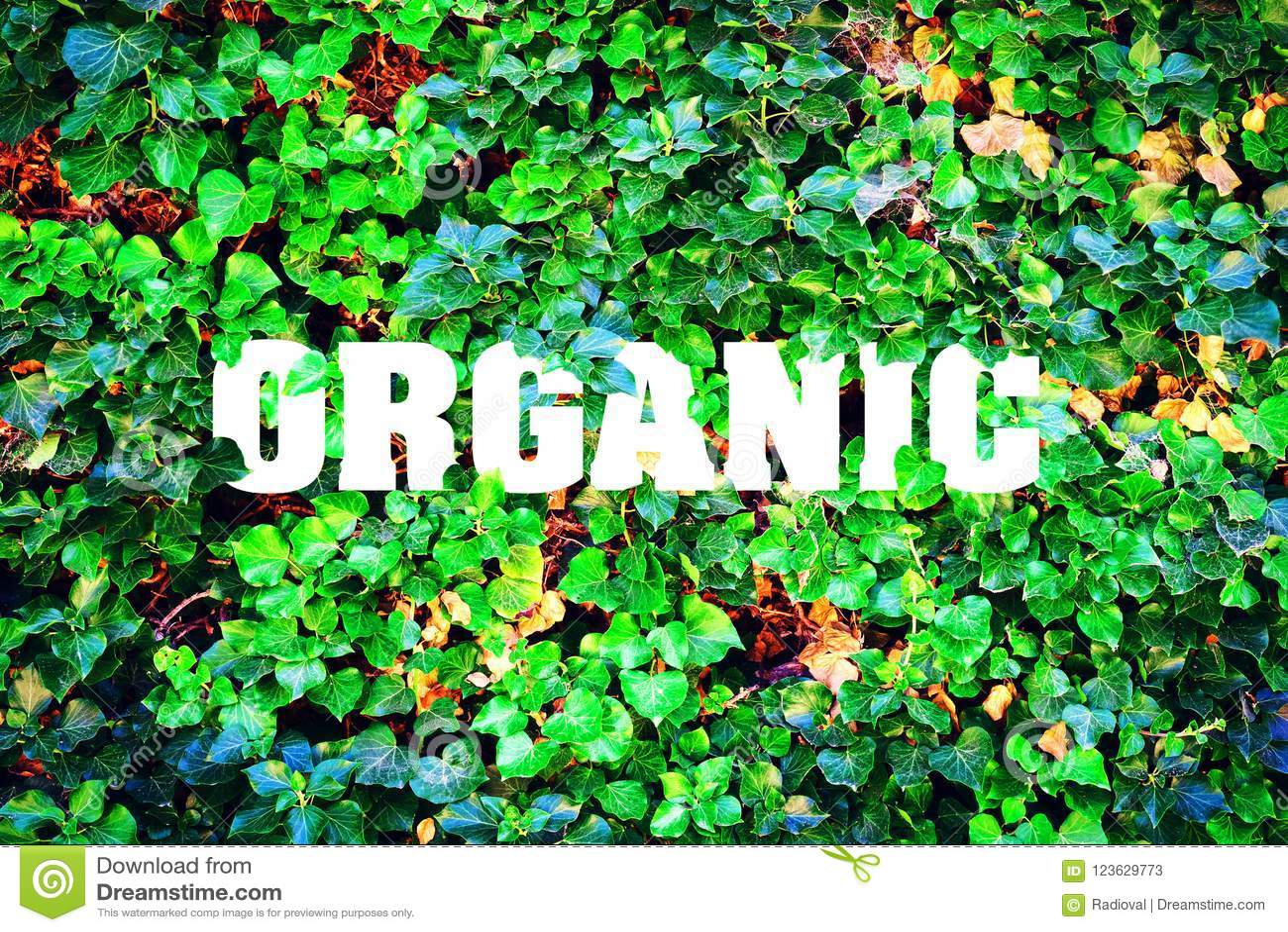 Οργανικός, επιγραφή στα πλαίσια των πράσινων φύλλων Φυσικό προϊόν
