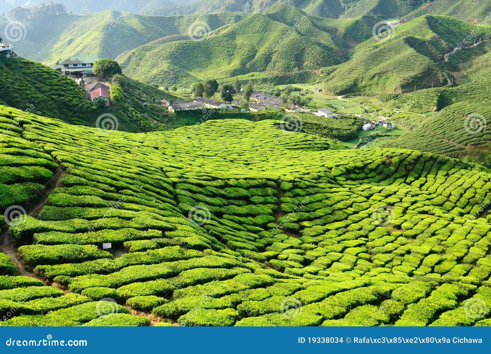 ορεινές περιοχές Μαλαισ