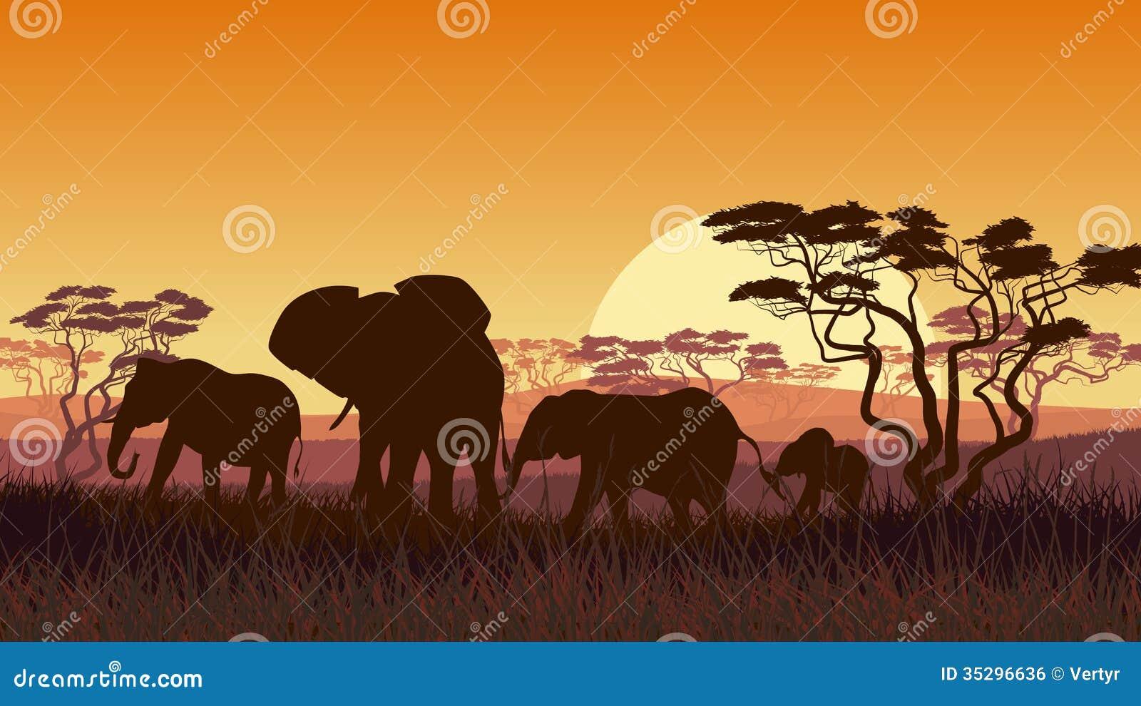 Οριζόντια απεικόνιση των άγριων ζώων στο αφρικανικό ηλιοβασίλεμα savann
