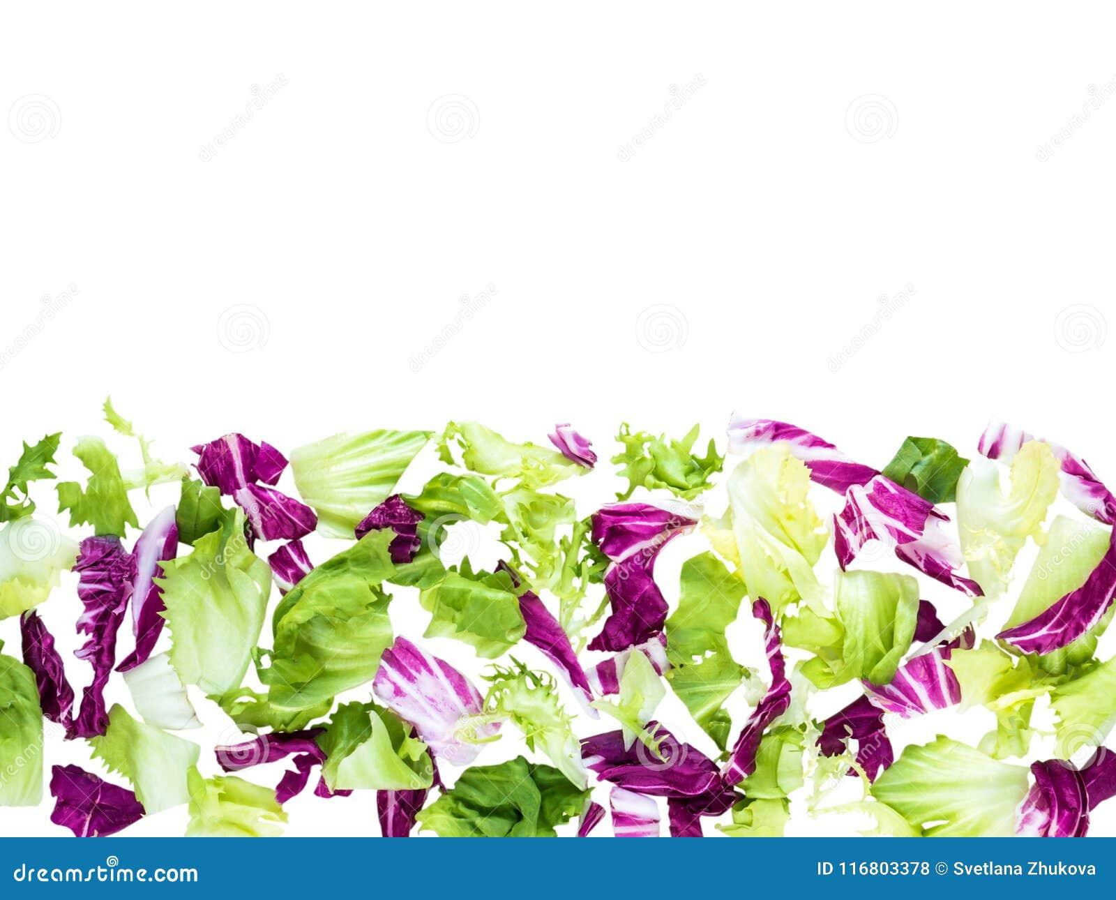 Οριζόντια σύνορα της μικτής τοπ άποψης φύλλων σαλάτας