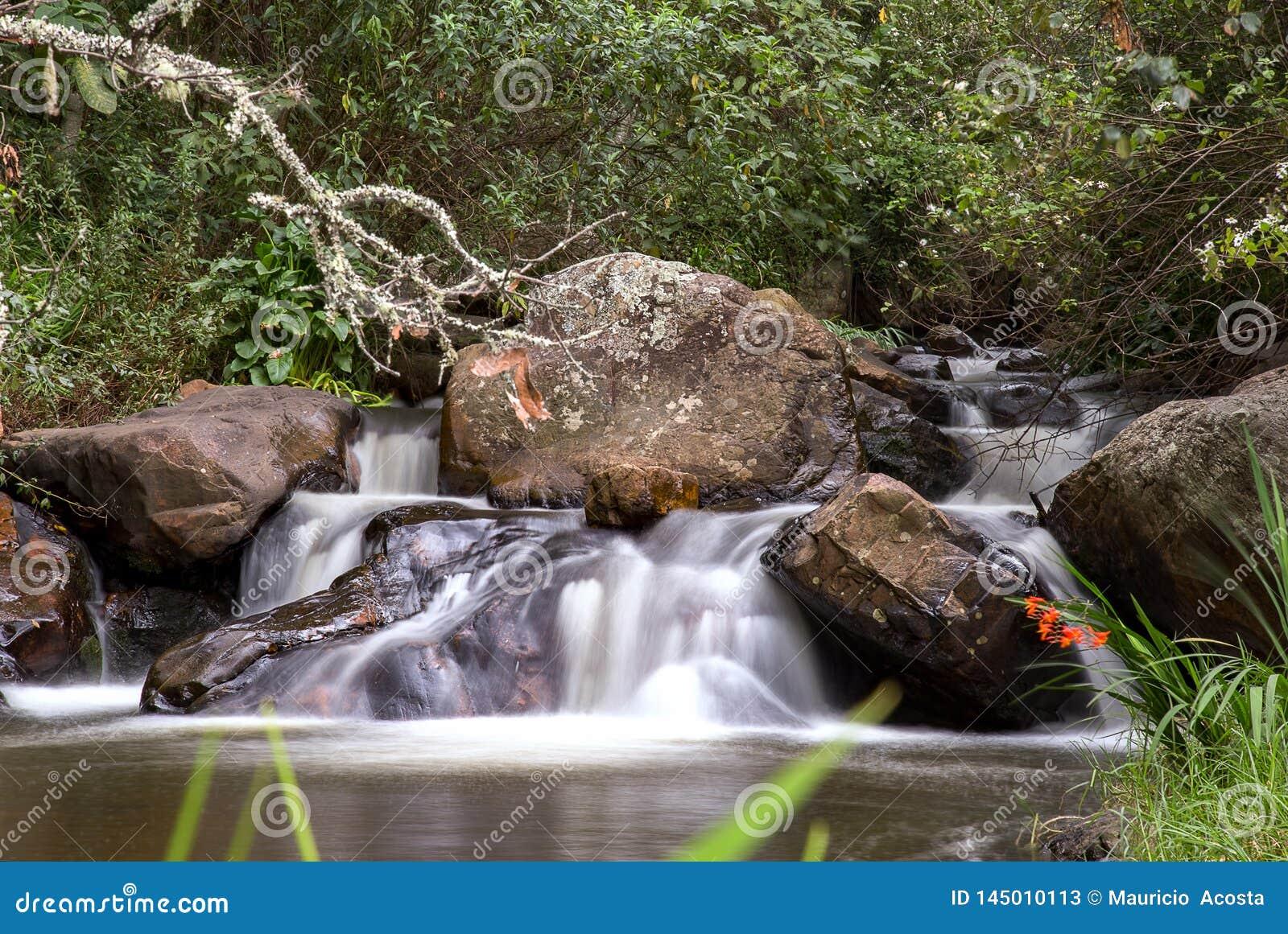 Ορμητικά σημεία ποταμού σε έναν κολπίσκο στα των Άνδεων βουνά