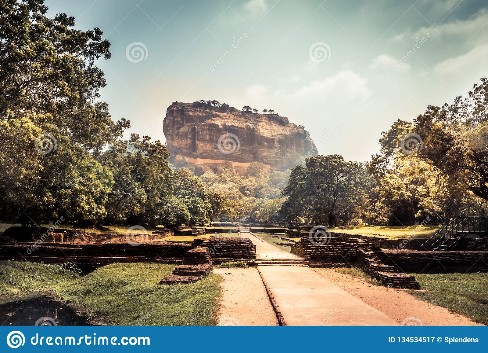 Ορόσημο Σρι Λάνκα της ΟΥΝΕΣΚΟ βουνών βράχου λιονταριών Sigiriya