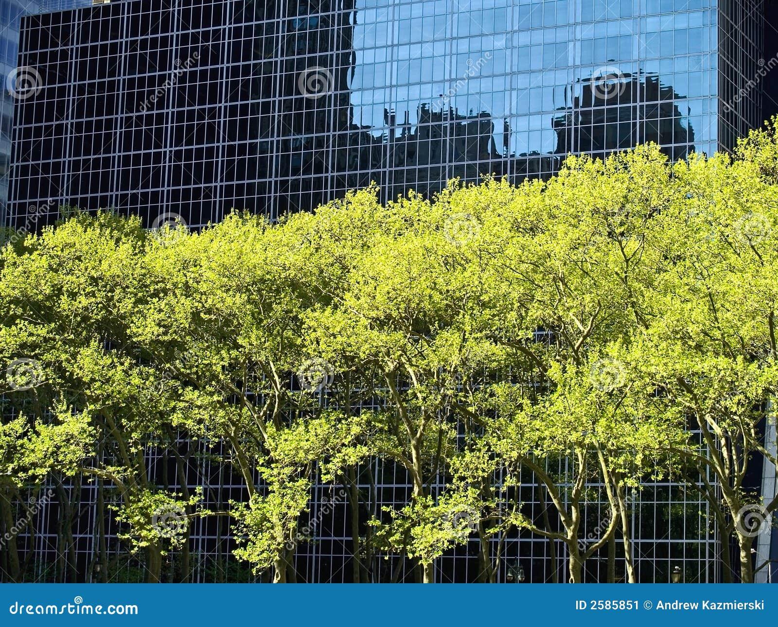Ουρανοξύστης και δέντρα