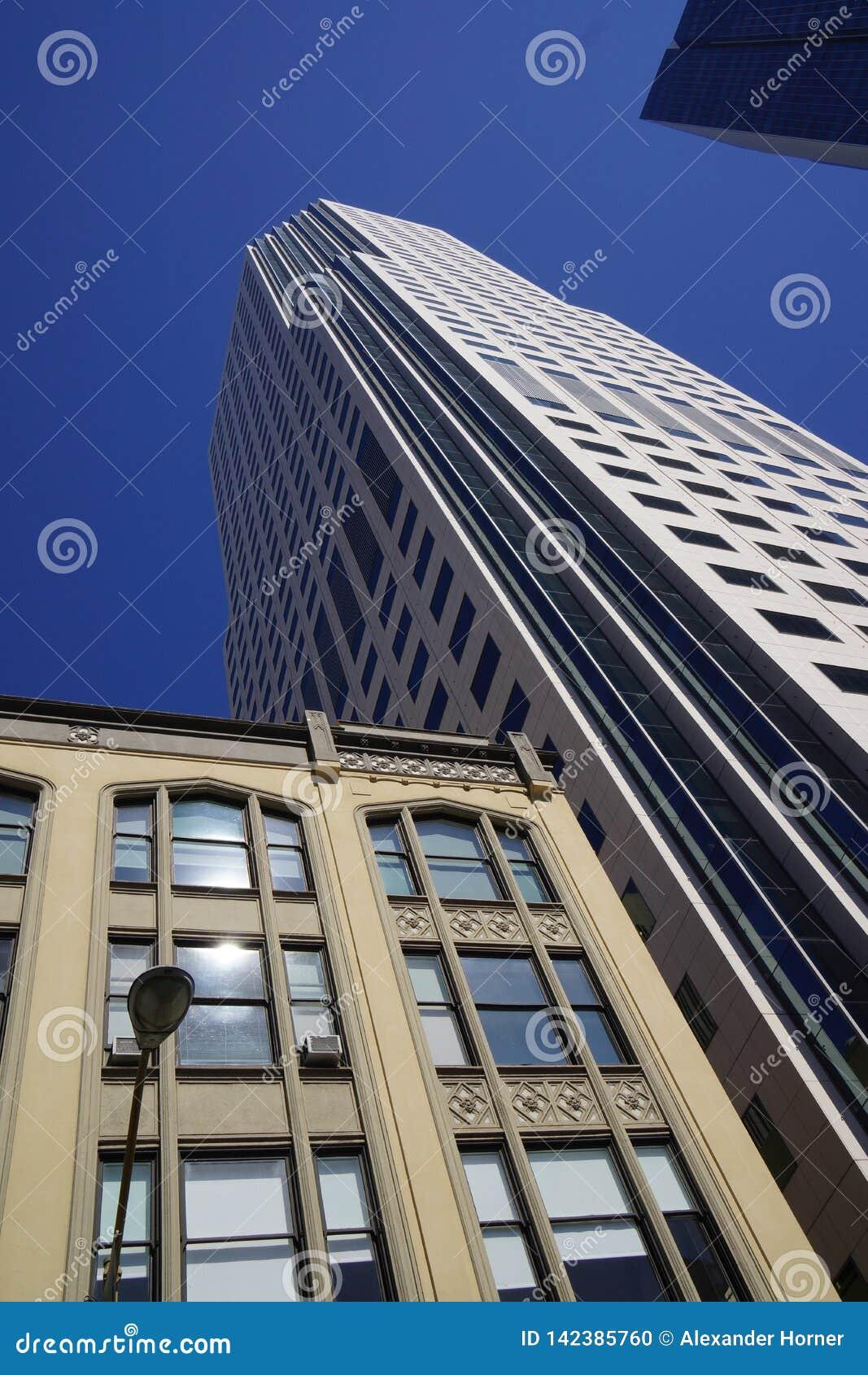 Ουρανοξύστης προοπτικής βατράχων