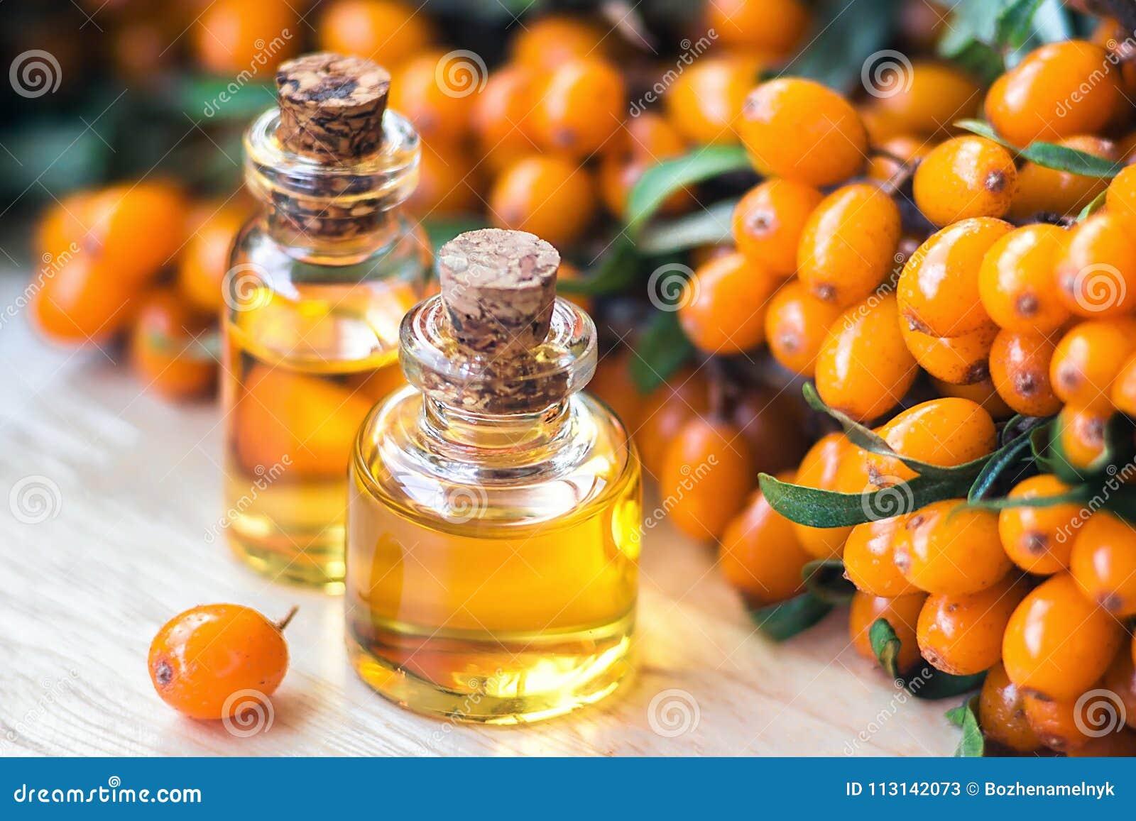 Ουσιαστικό πετρέλαιο της λευκαγκαθιάς Hippophae στο μπουκάλι γυαλιού με τα φρέσκα, juicy ώριμα κίτρινα μούρα στον κλάδο με το πρά