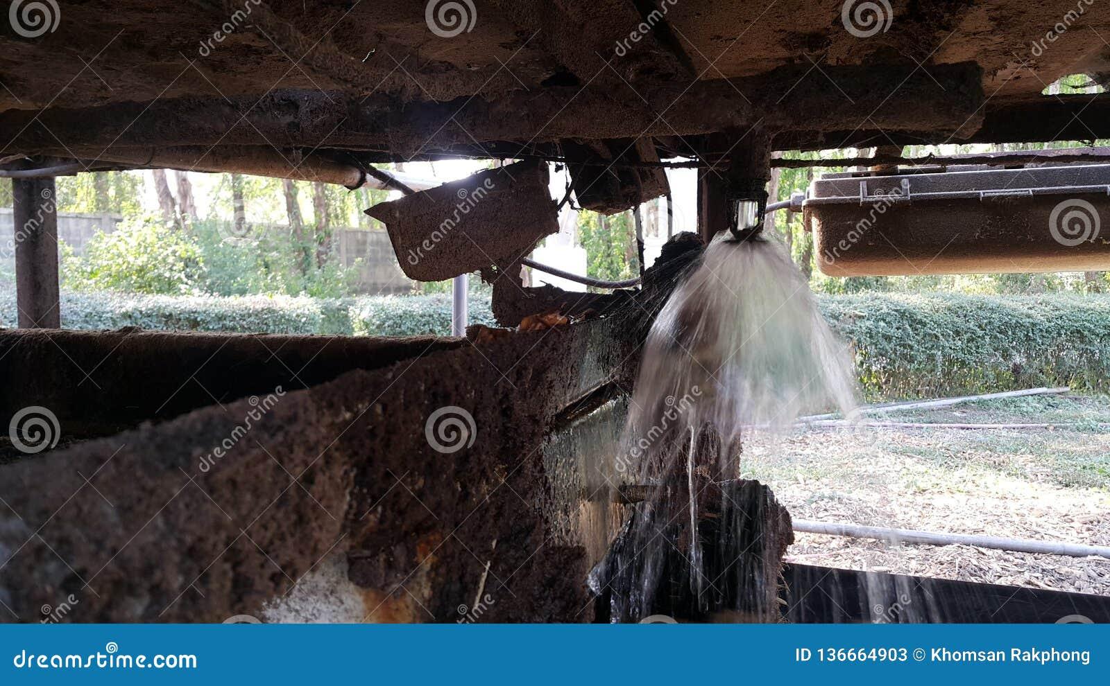 ο άλτης έχει το νερό να εγχύσει στο μεταφορέα ζωνών στη δεξαμενή αποθήκευσης στο εργοστάσιο