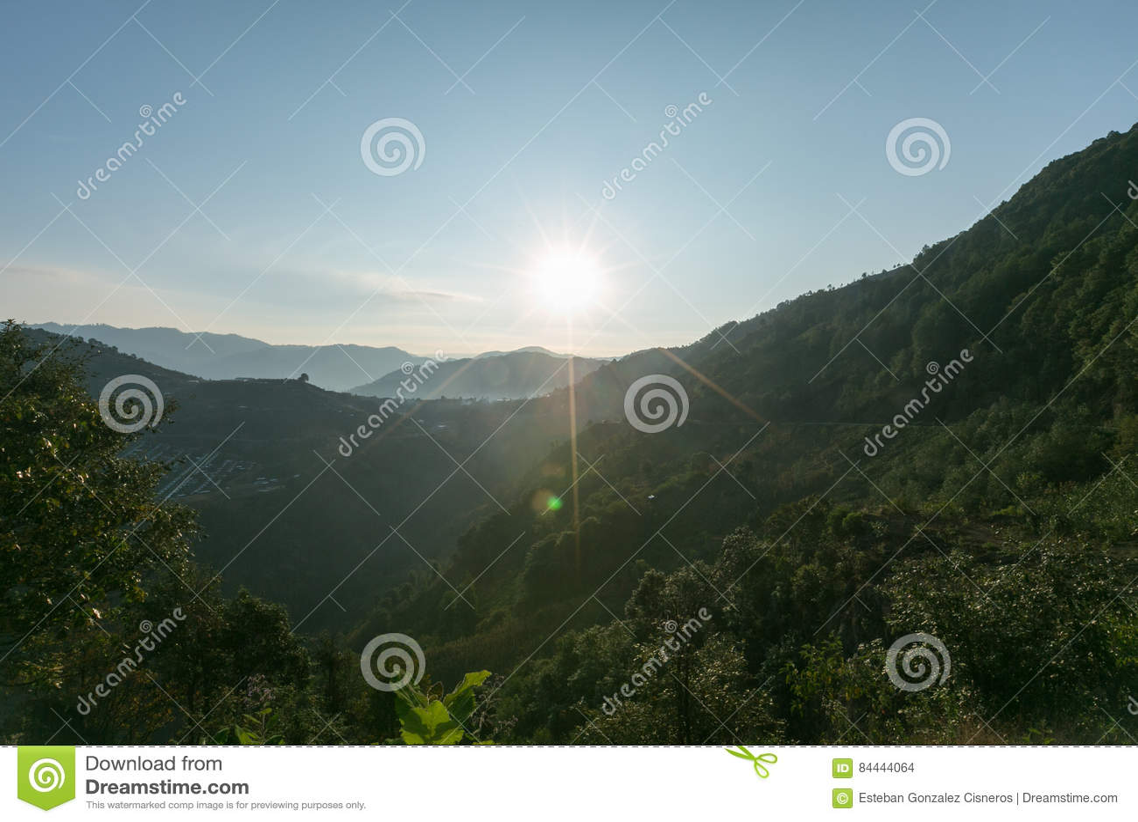 Ο ήλιος χάνεται μεταξύ των δέντρων