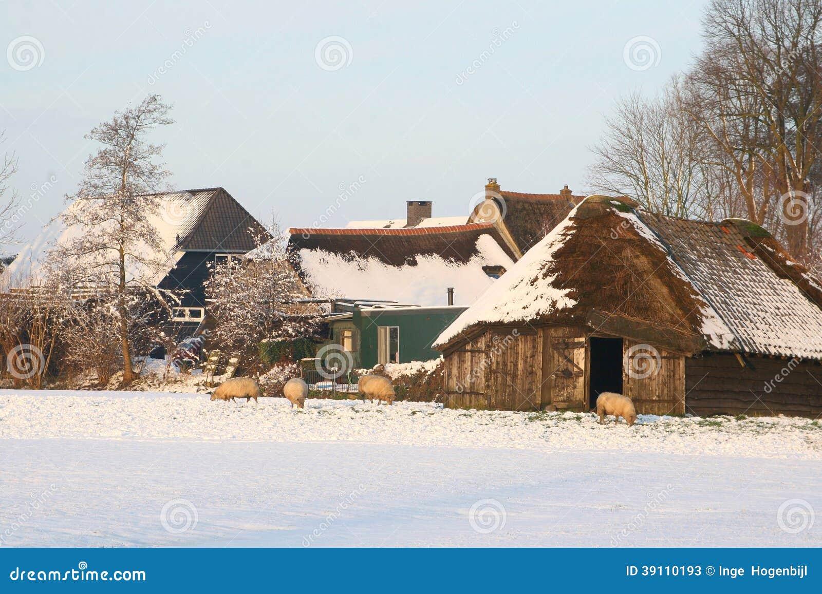 Ολλανδικό τοπίο πόλντερ με ένα sheepfold