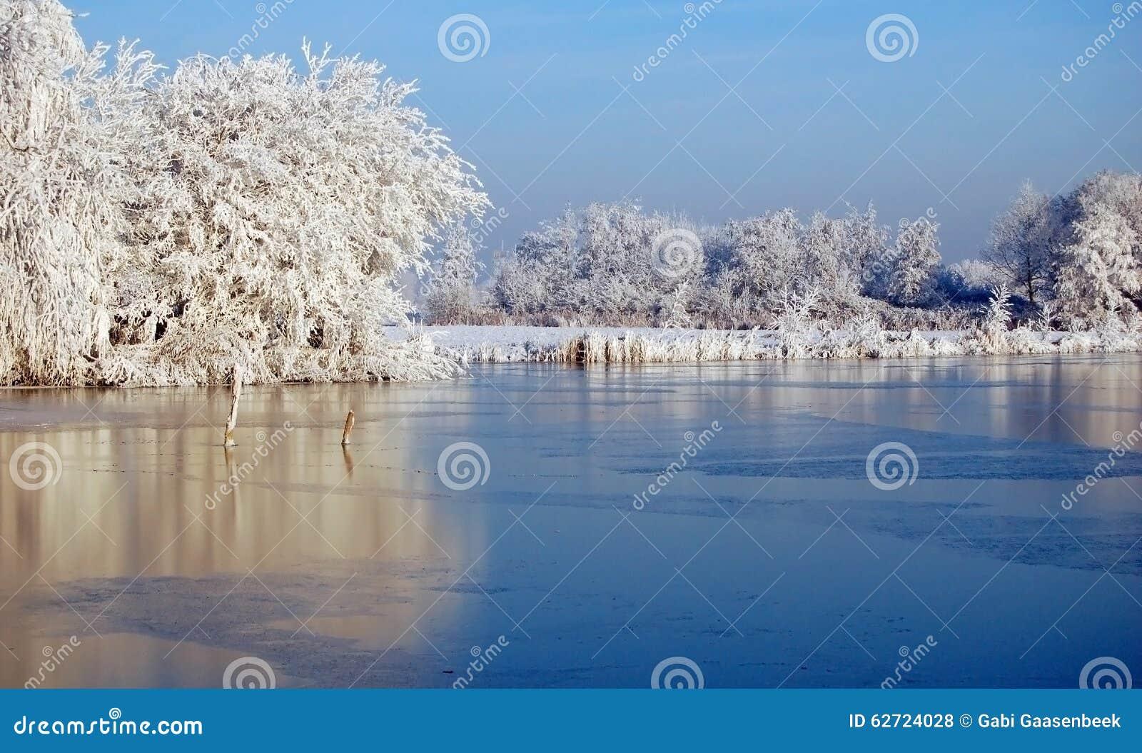 Ολλανδικό τοπίο χιονιού με την παγωμένα λίμνη και τα δέντρα