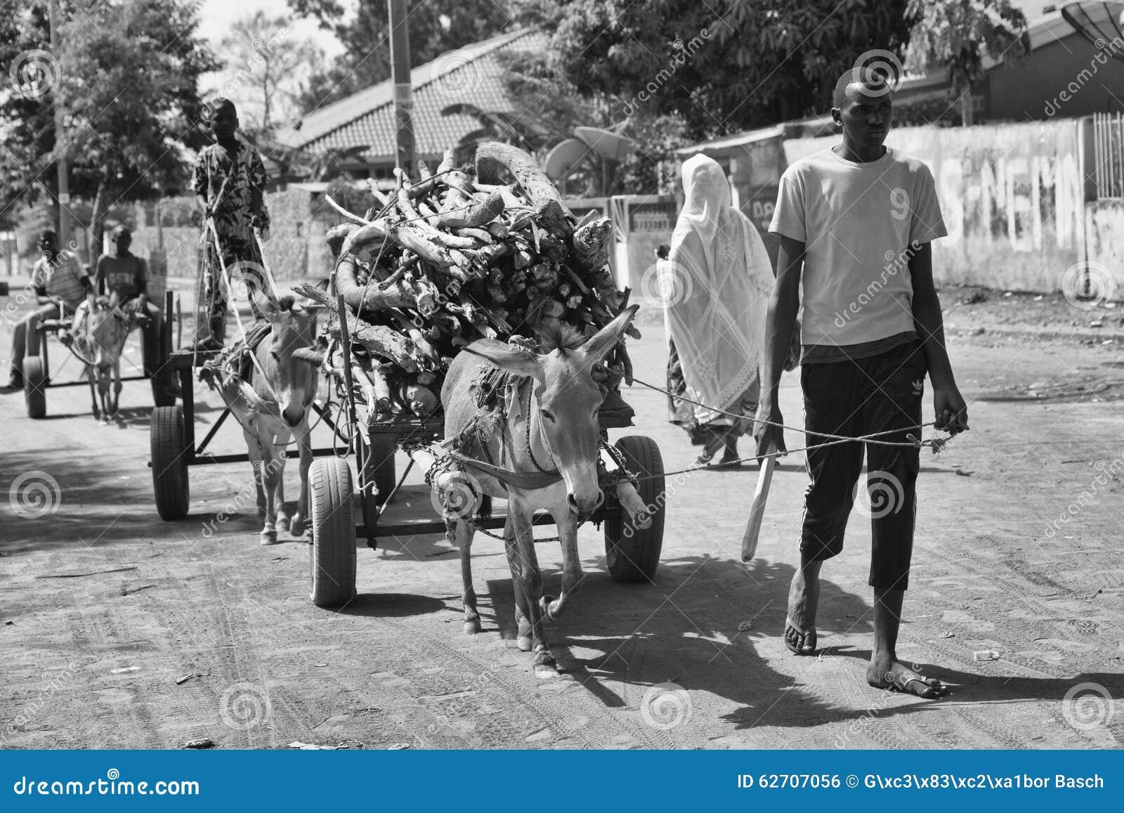Ο αφρικανικός νεαρός άνδρας φέρνει το καυσόξυλο