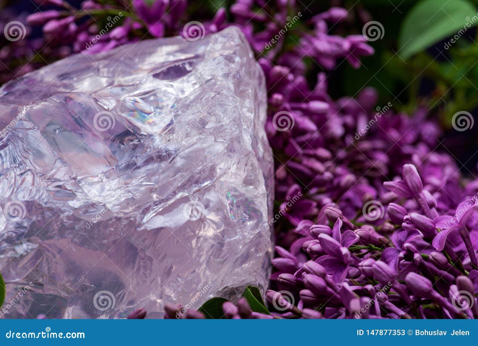 Ο βαθμός πολύτιμων λίθων τραχύς αυξήθηκε χοντρό κομμάτι χαλαζία από τη Μαδαγασκάρη που περιβλήθηκε από το πορφυρό ιώδες λουλούδι