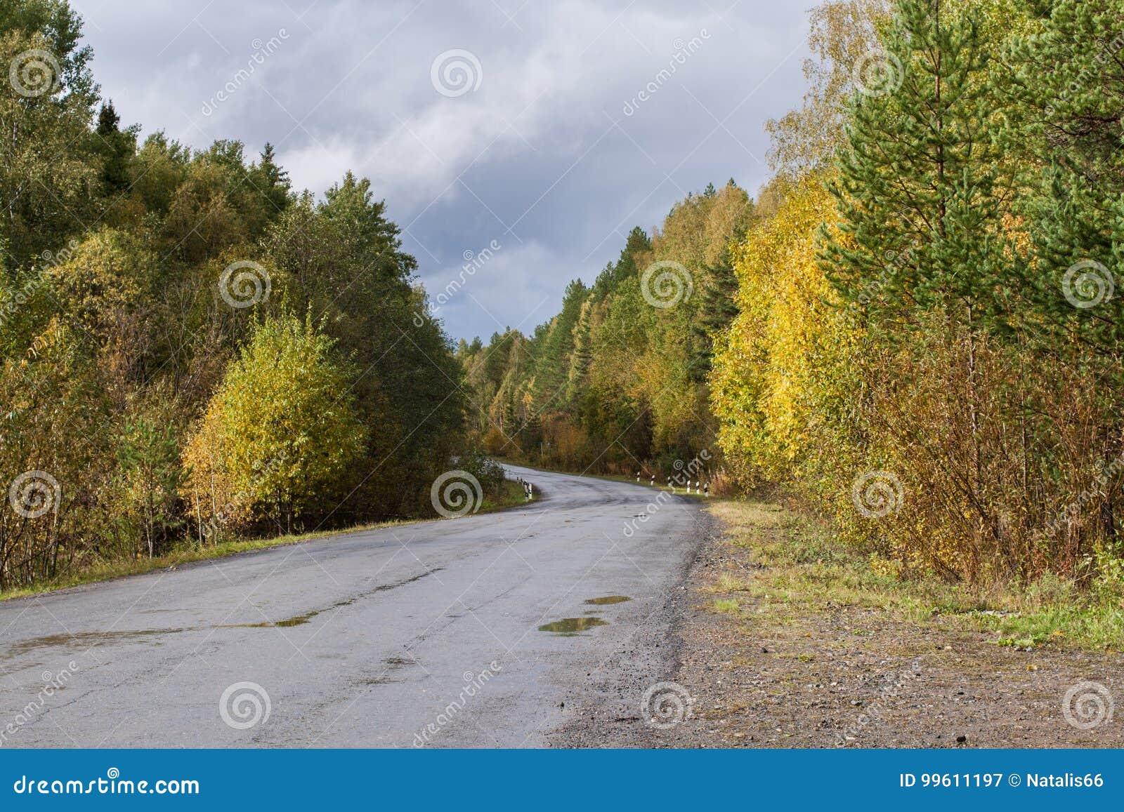 Ο δρόμος ασφάλτου μέσω του ζωηρόχρωμου δάσους φθινοπώρου