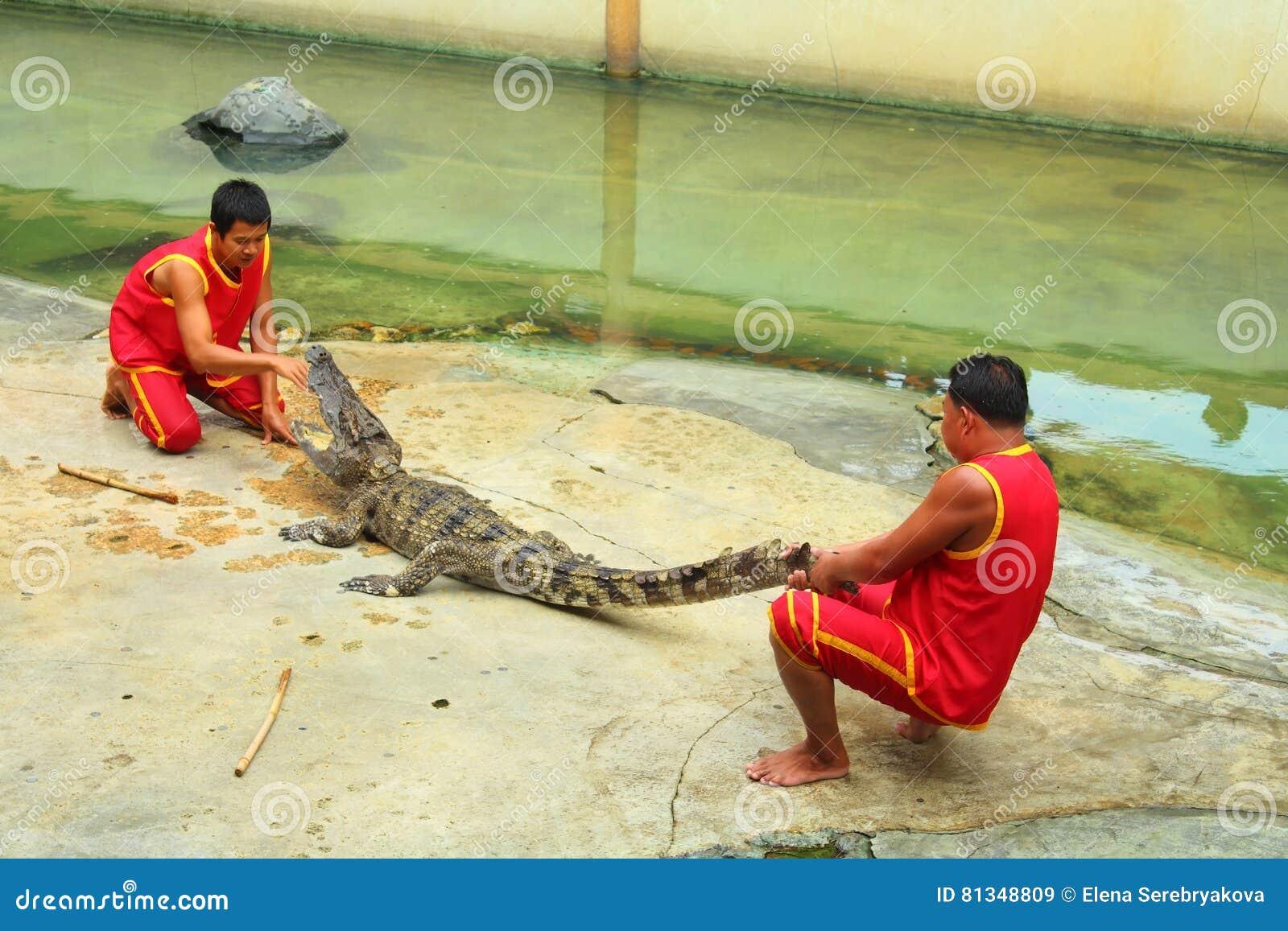 Ο κροκόδειλος παρουσιάζει