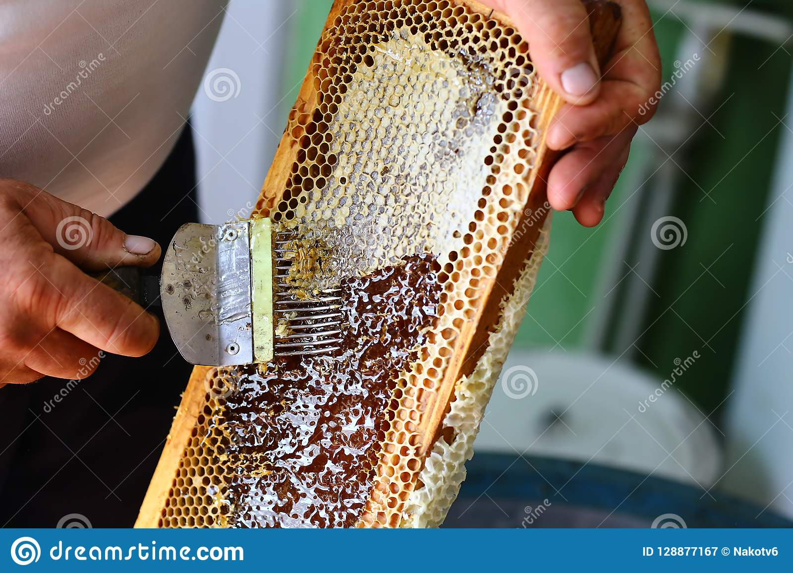 Ο μελισσοκόμος εκπωματίζει την κηρήθρα με την εκπωμάτιση του δικράνου