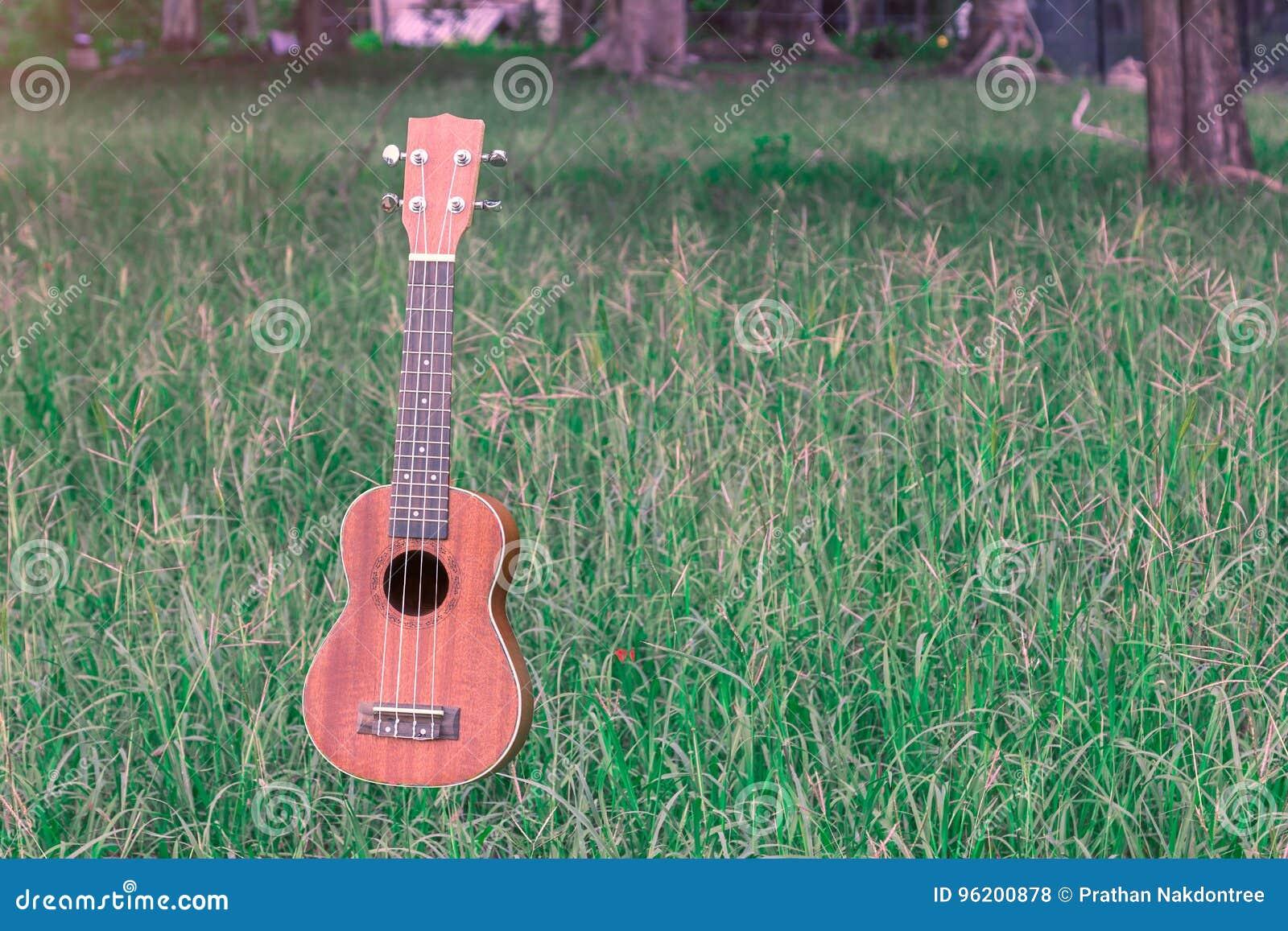 Ο μετεωρισμός ukulele