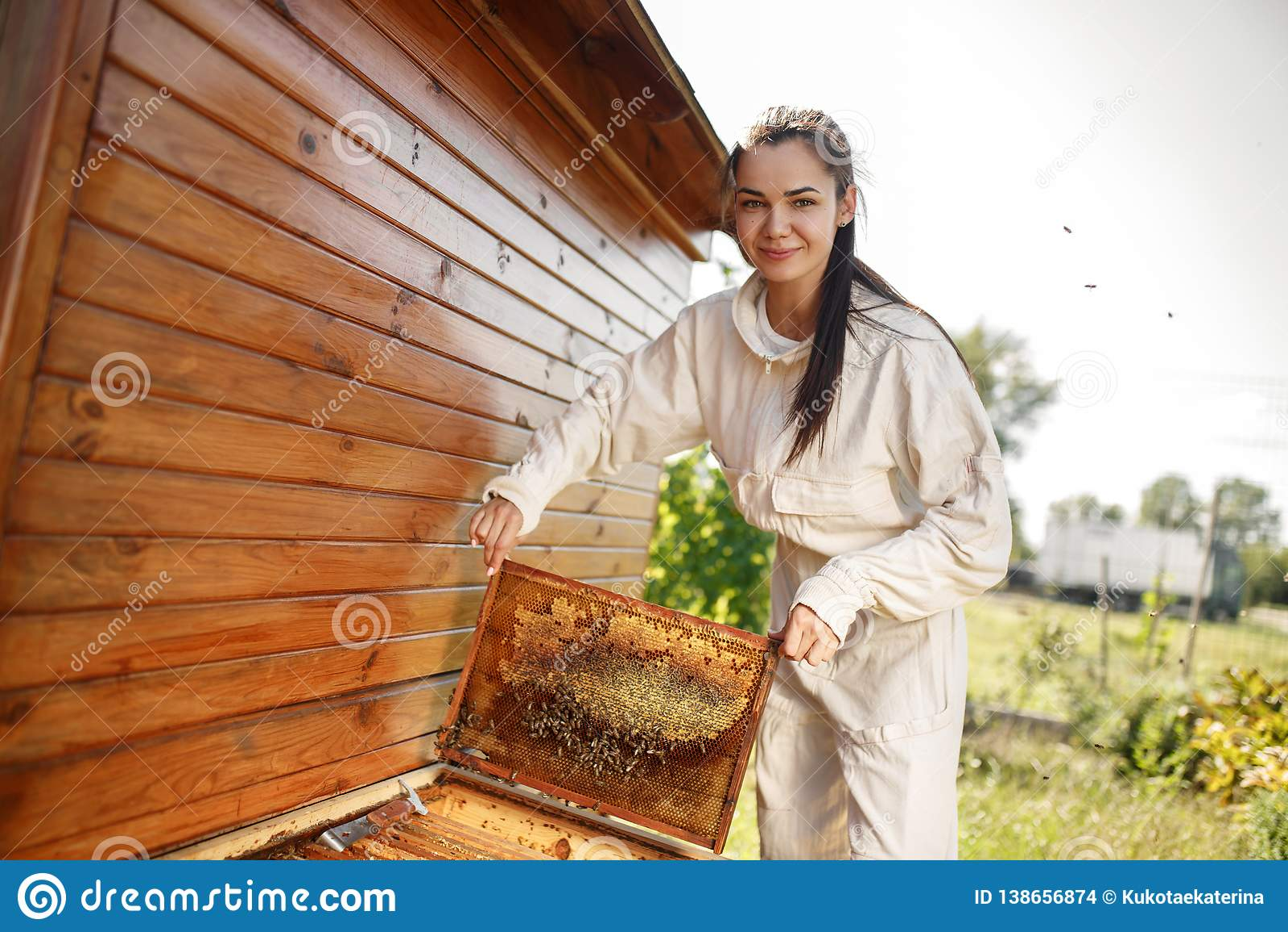 Ο νέος θηλυκός μελισσοκόμος βγάζει από την κυψέλη ένα ξύλινο πλαίσιο με την κηρήθρα Συλλέξτε το μέλι Έννοια μελισσοκομίας