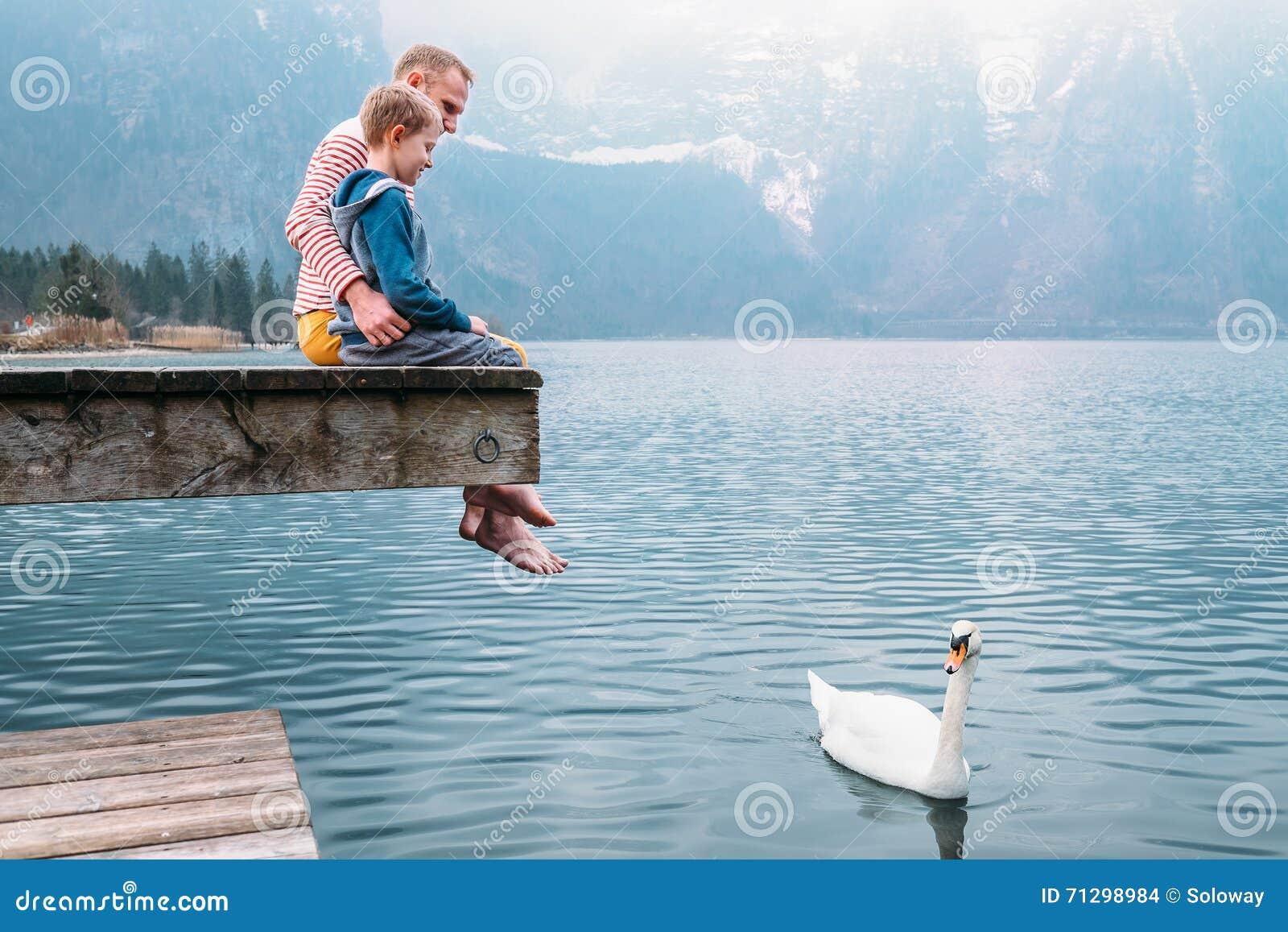 a9ccca3c3cca Ο πατέρας με το γιο κάθεται στην ξύλινη αποβάθρα και κοιτάζει στον άσπρο  κύκνο κολυμπά