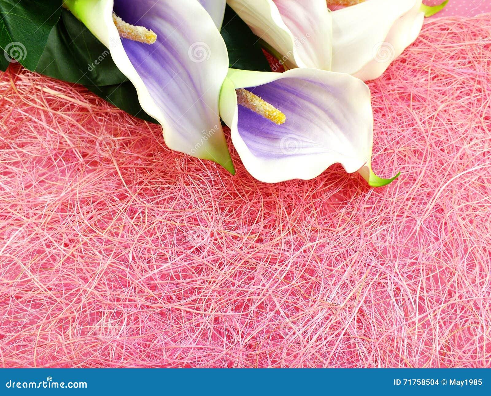 Ο τεχνητός calla κρίνος ανθίζει την ανθοδέσμη με το ρόδινο υπόβαθρο σύστασης